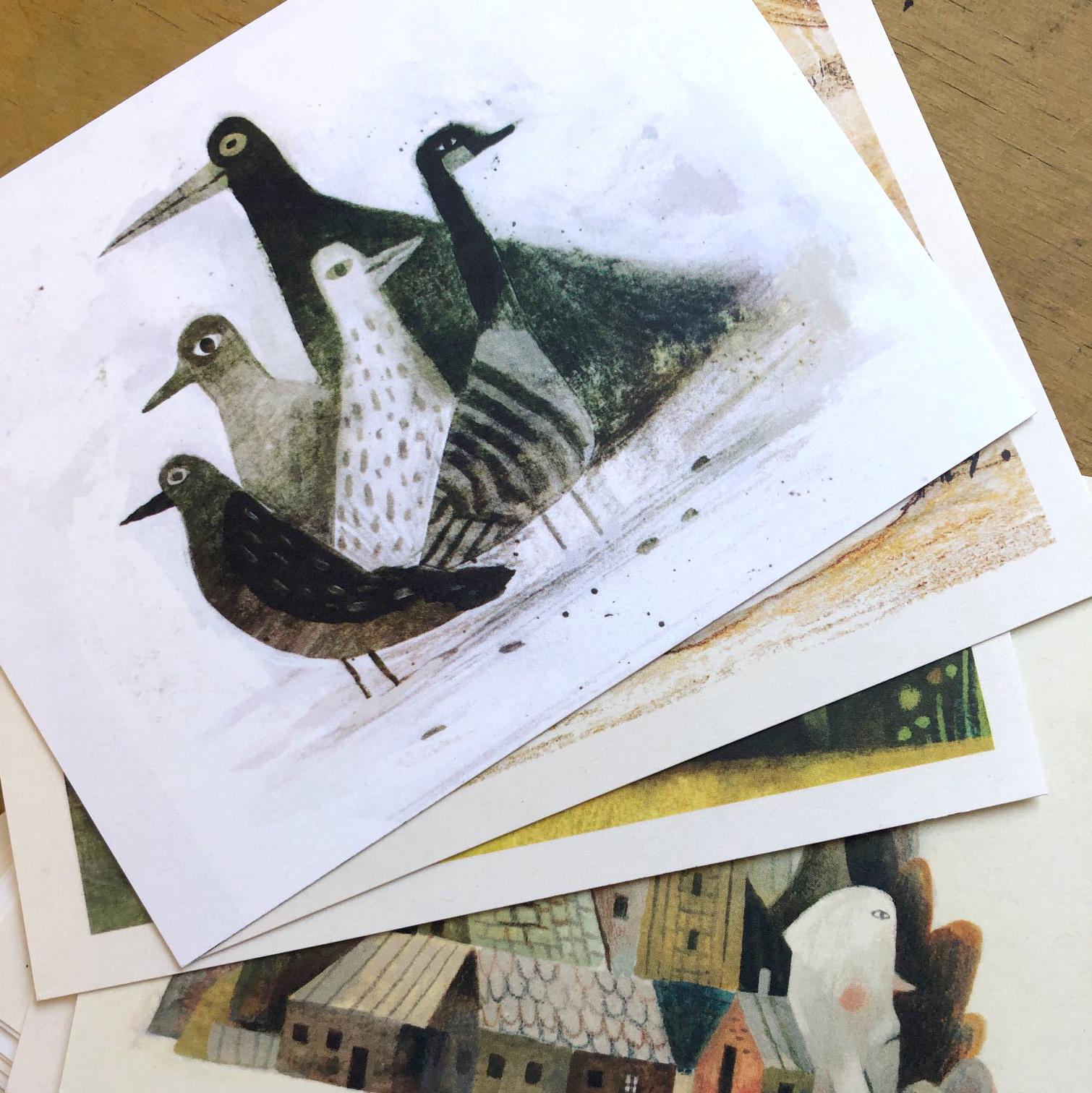 bird fan postcards promo.jpg