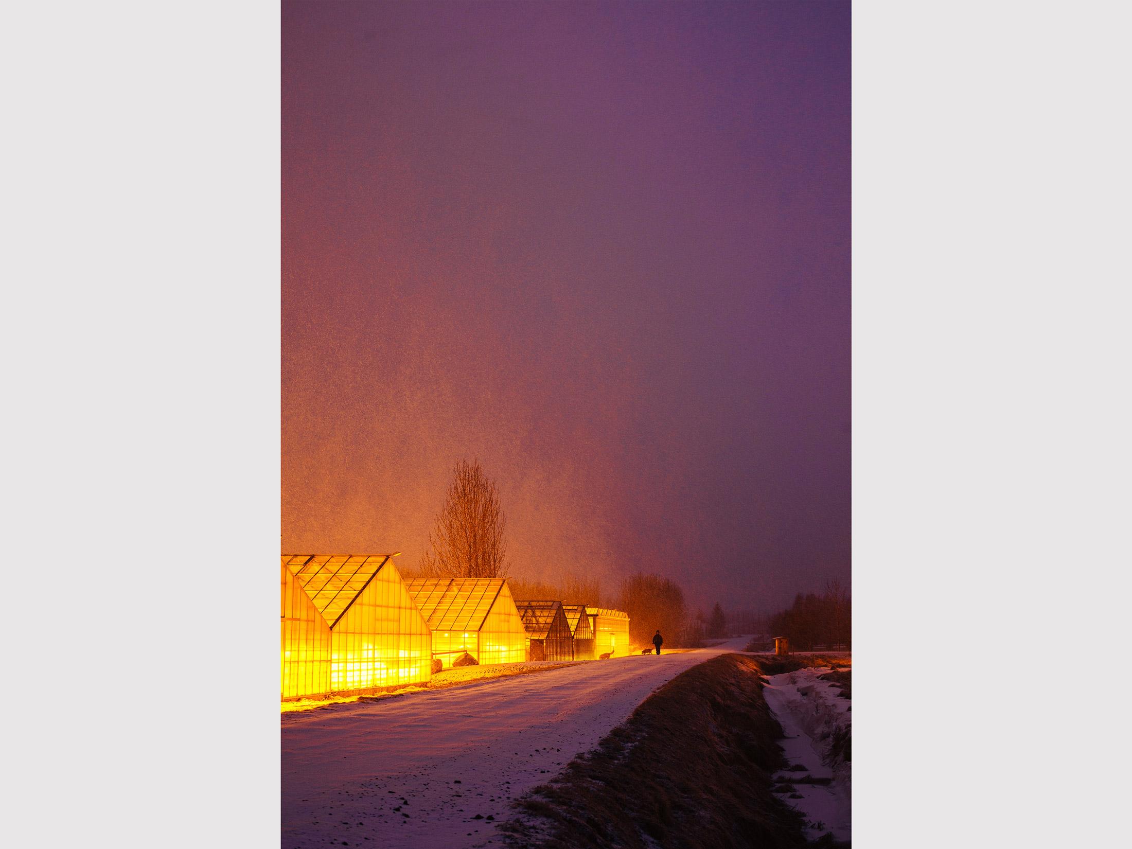 iceland_greenhouse.jpg