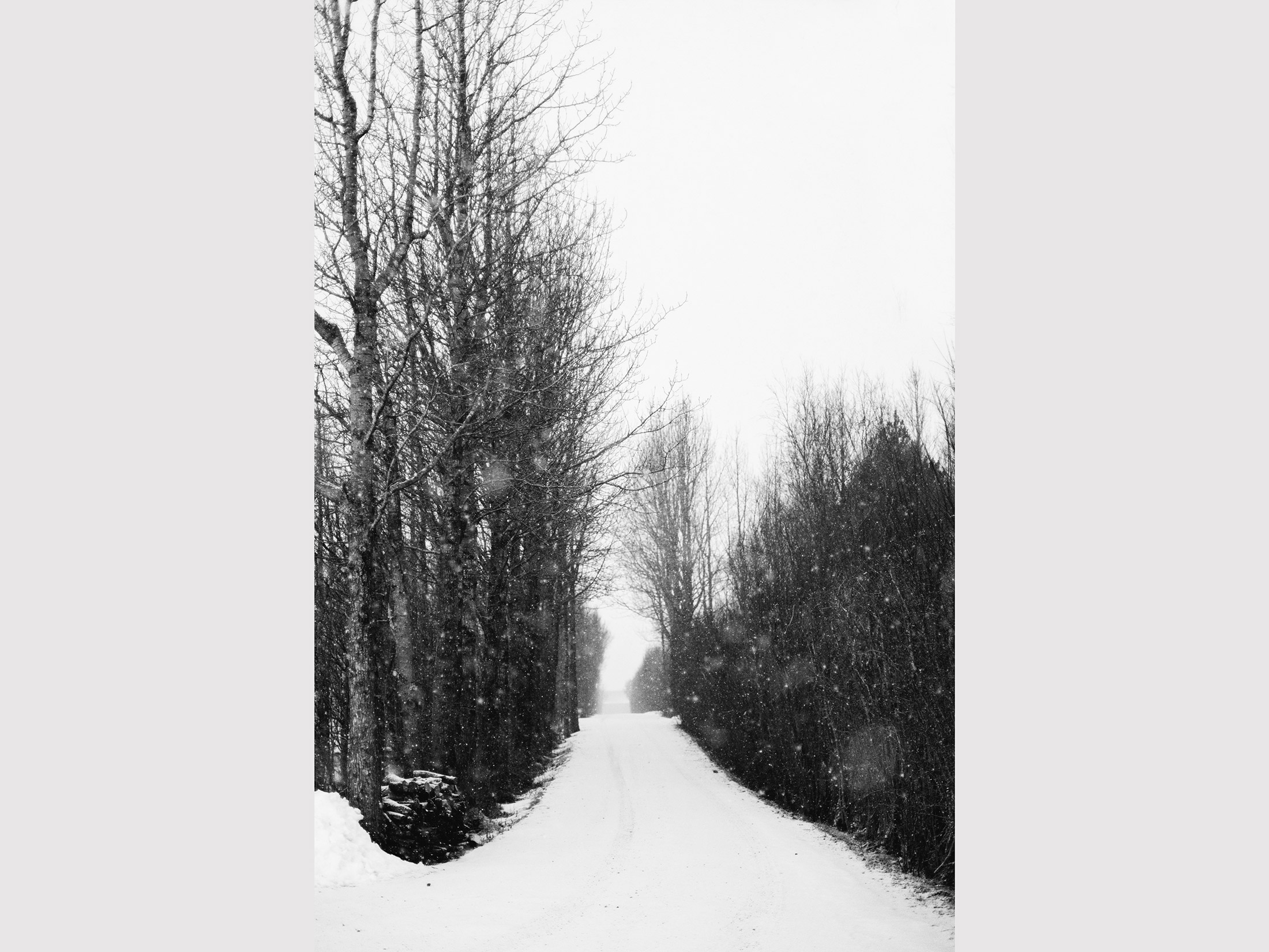 iceland_road.jpg