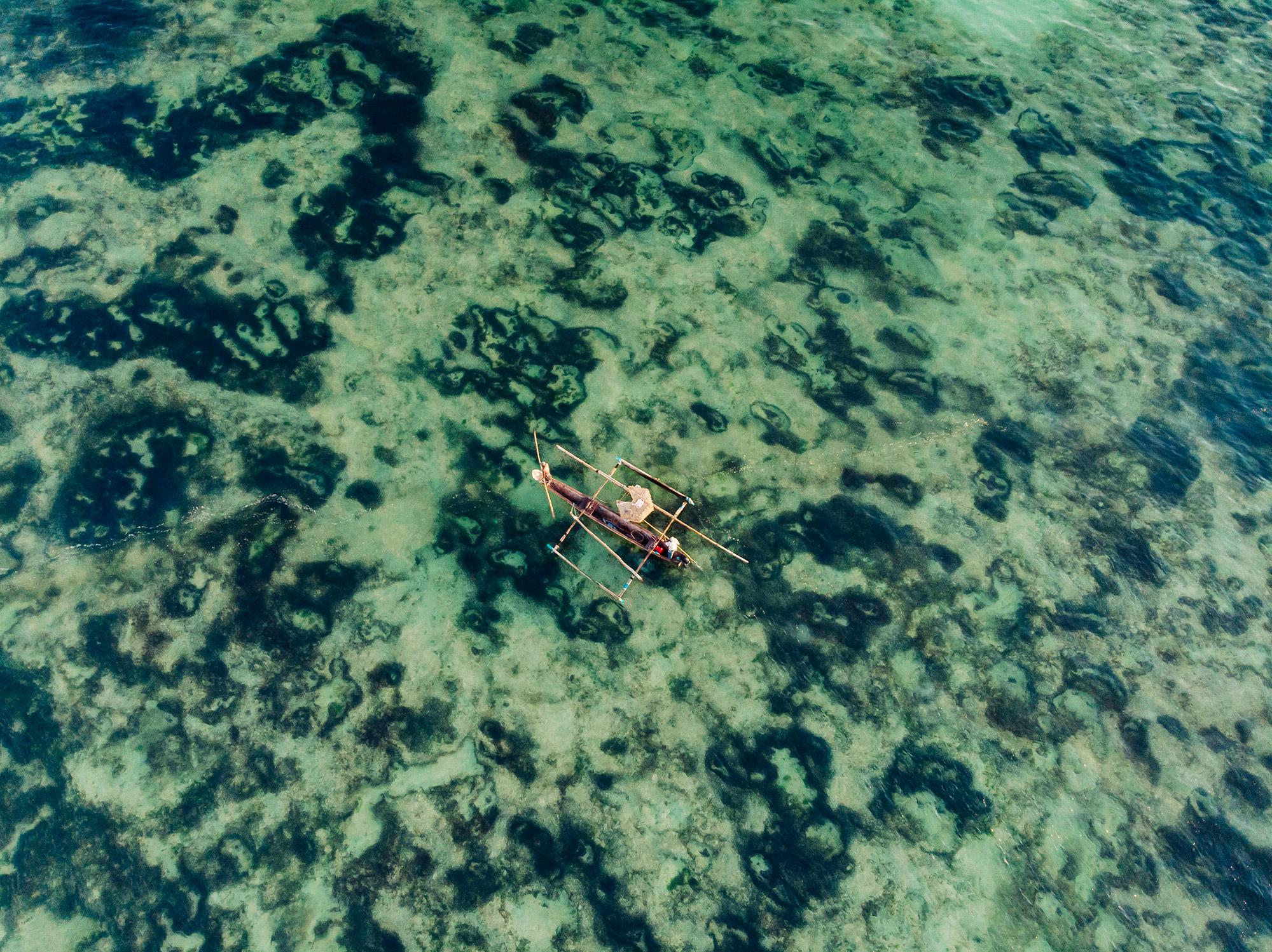 APitts_Condor_Zanzibar_190.jpg
