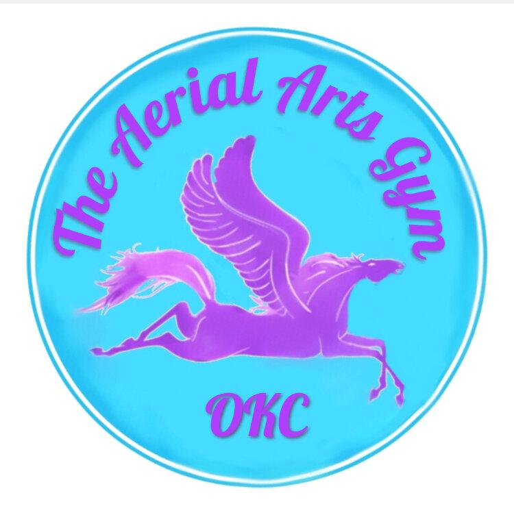 Aerial Arts Gym Logo.jpg