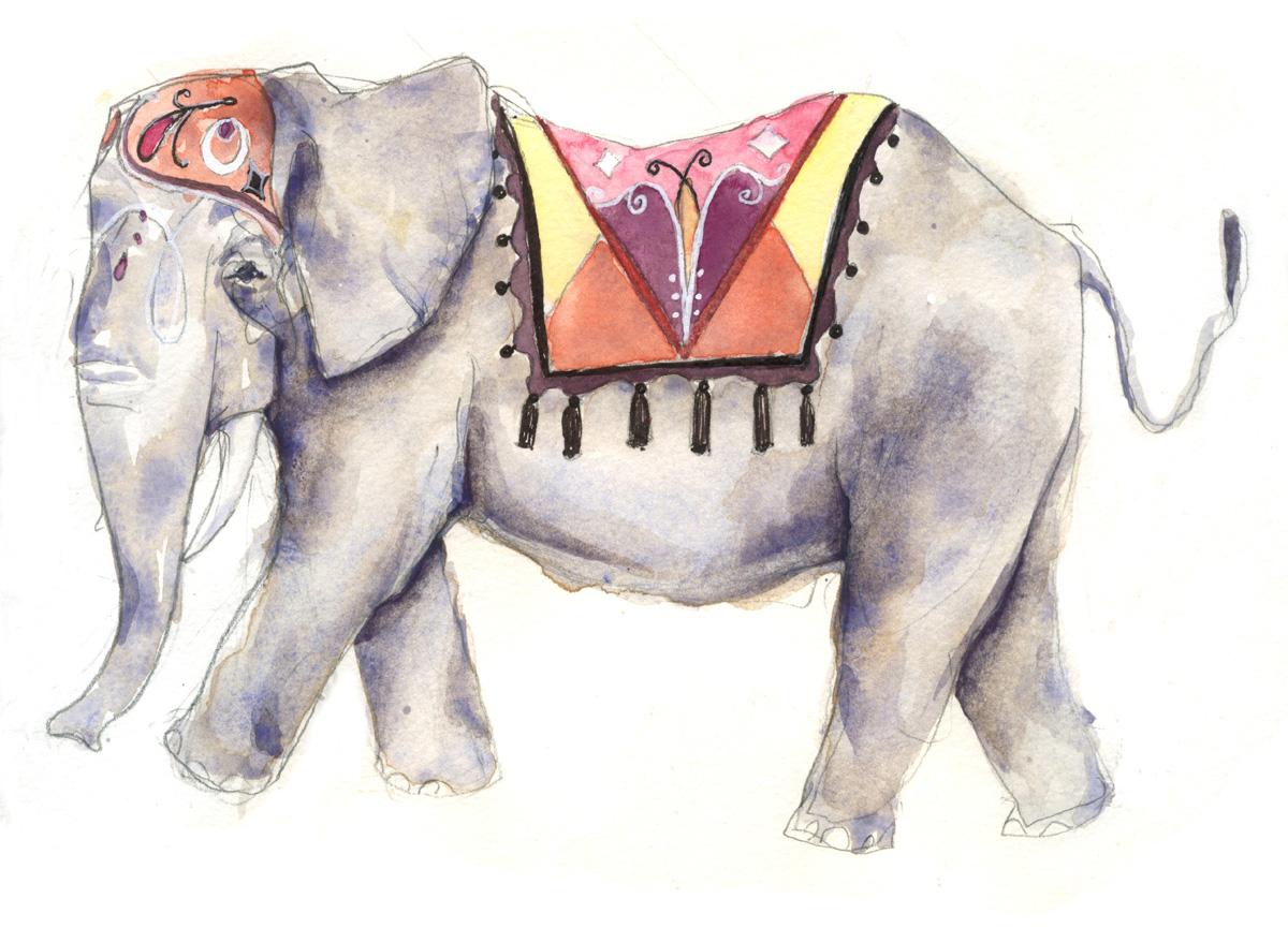 elephant rev.jpg