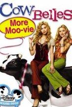Cow Belles.jpg