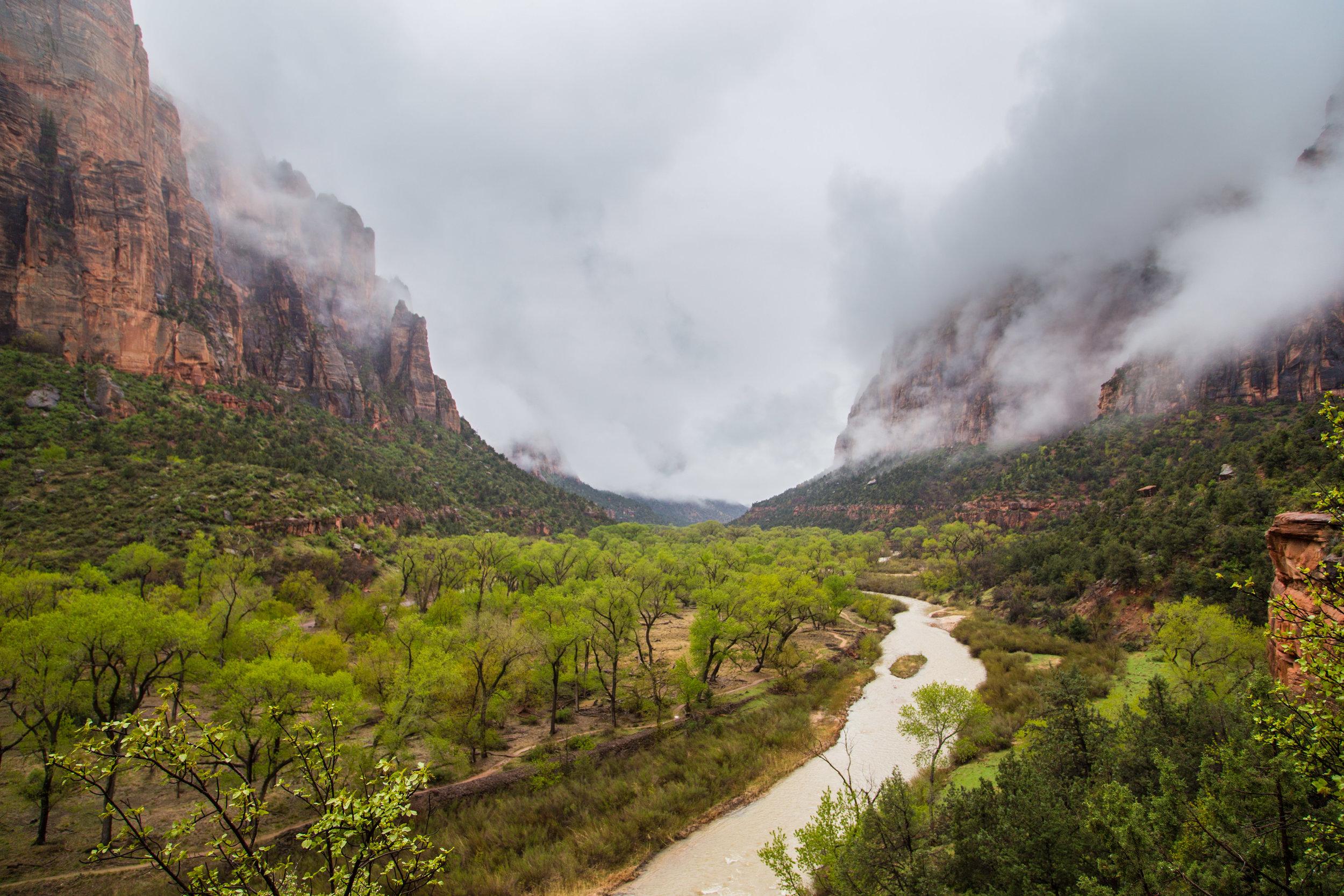 View from Kayenta Trail