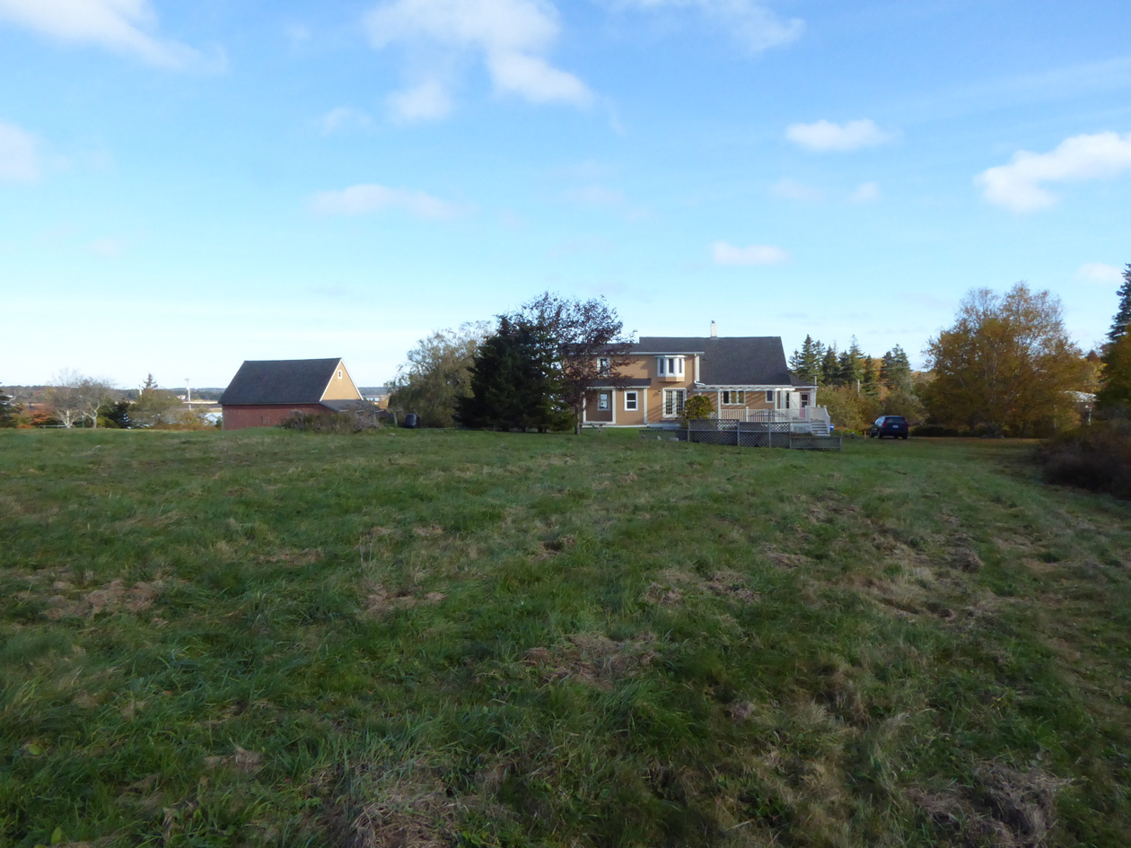 Field Looking back at House 2017.jpg