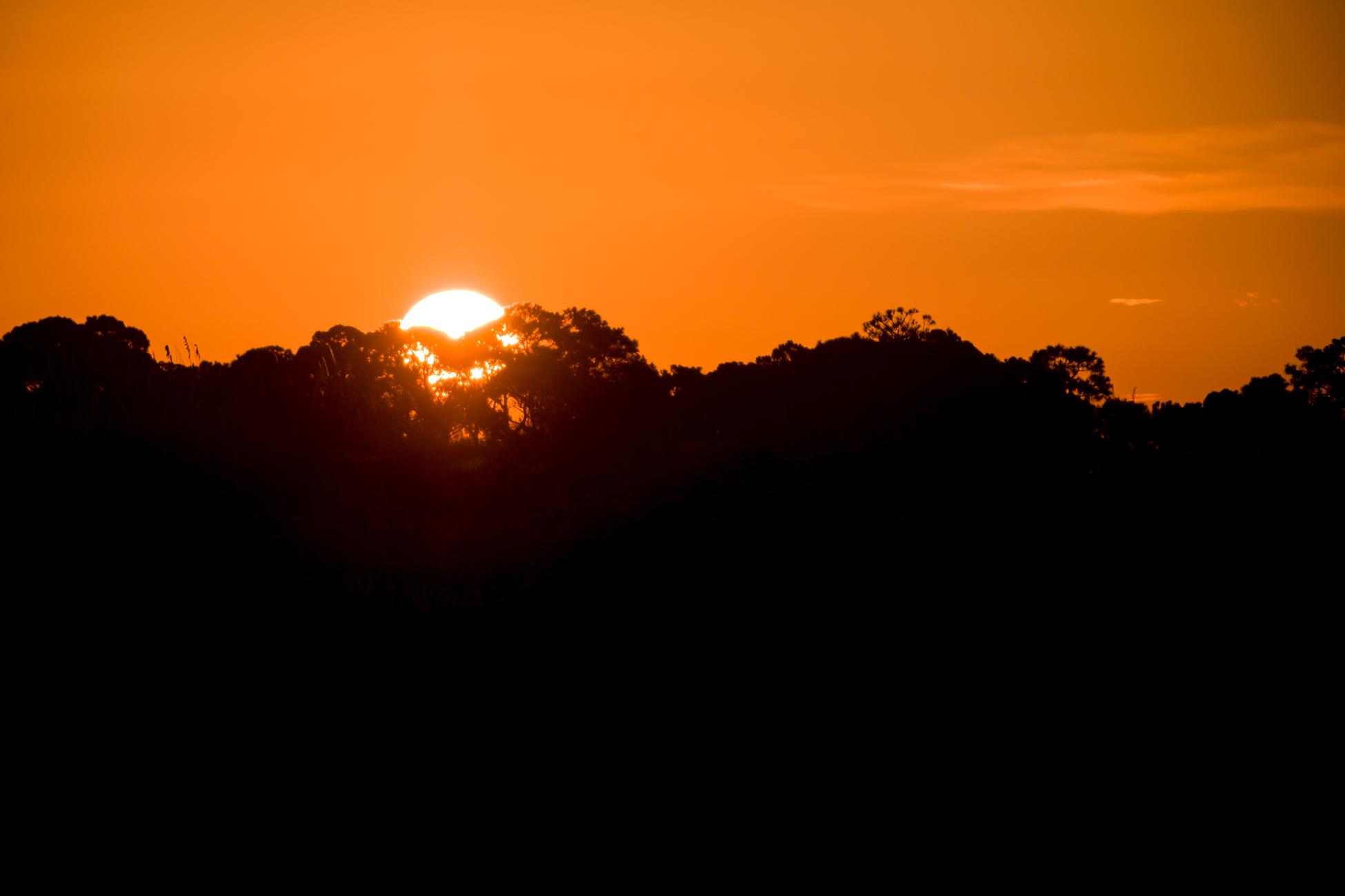 Sunrise over the dunes.