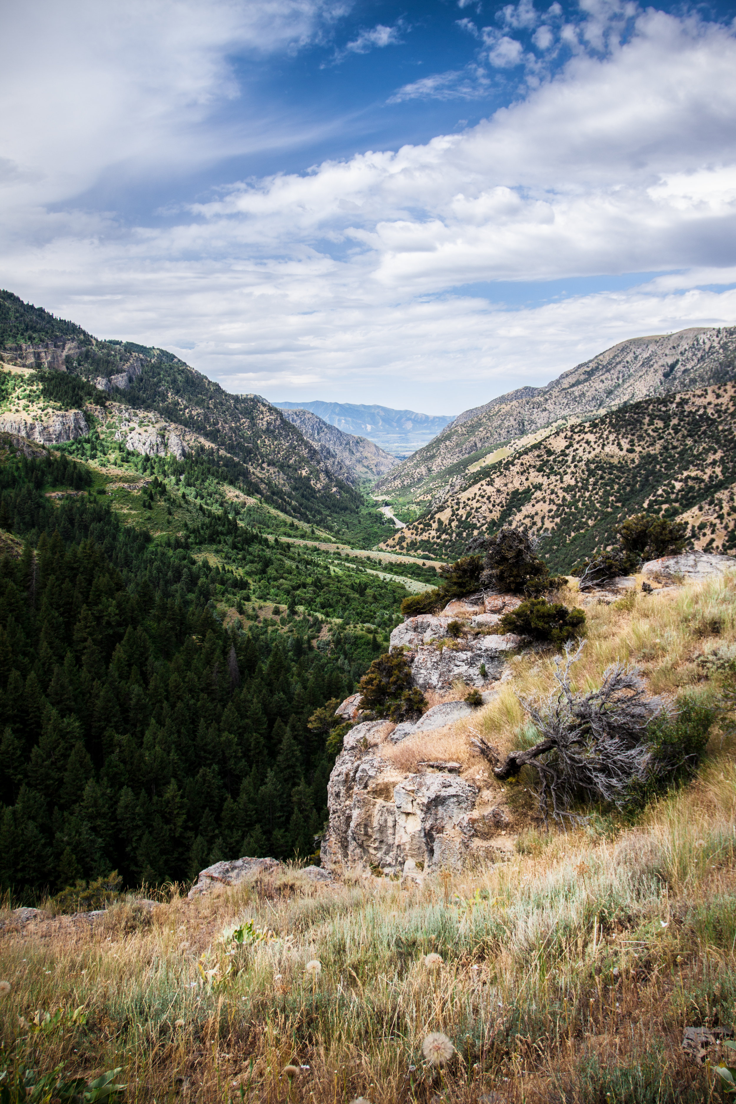Crimson Trail, Logan Canyon, Utah