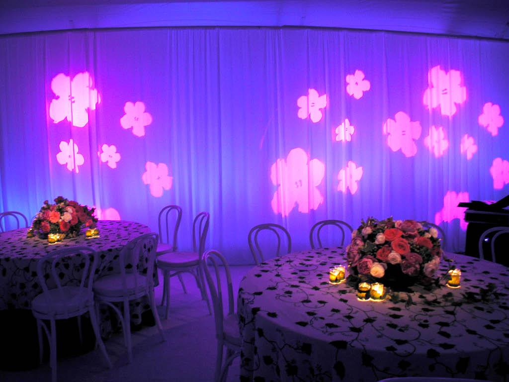 Magenta Flowers.jpg
