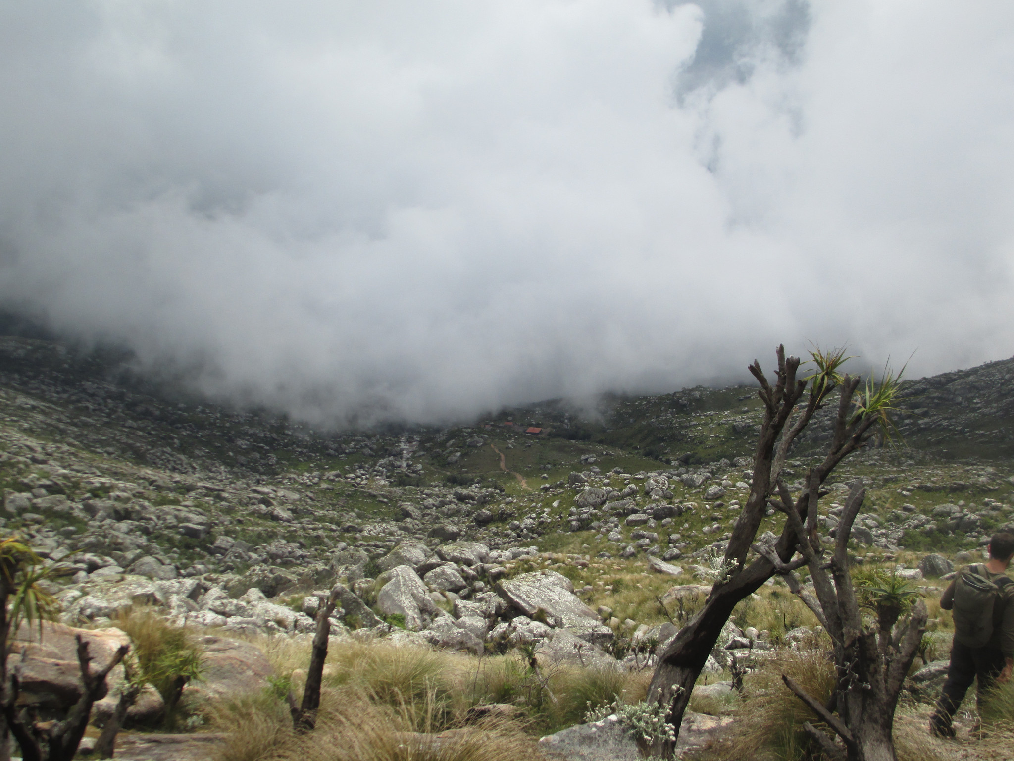 Mt Mulanji3.JPG