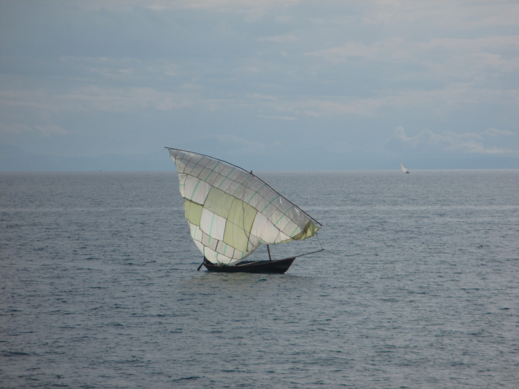 Patchy sail.JPG