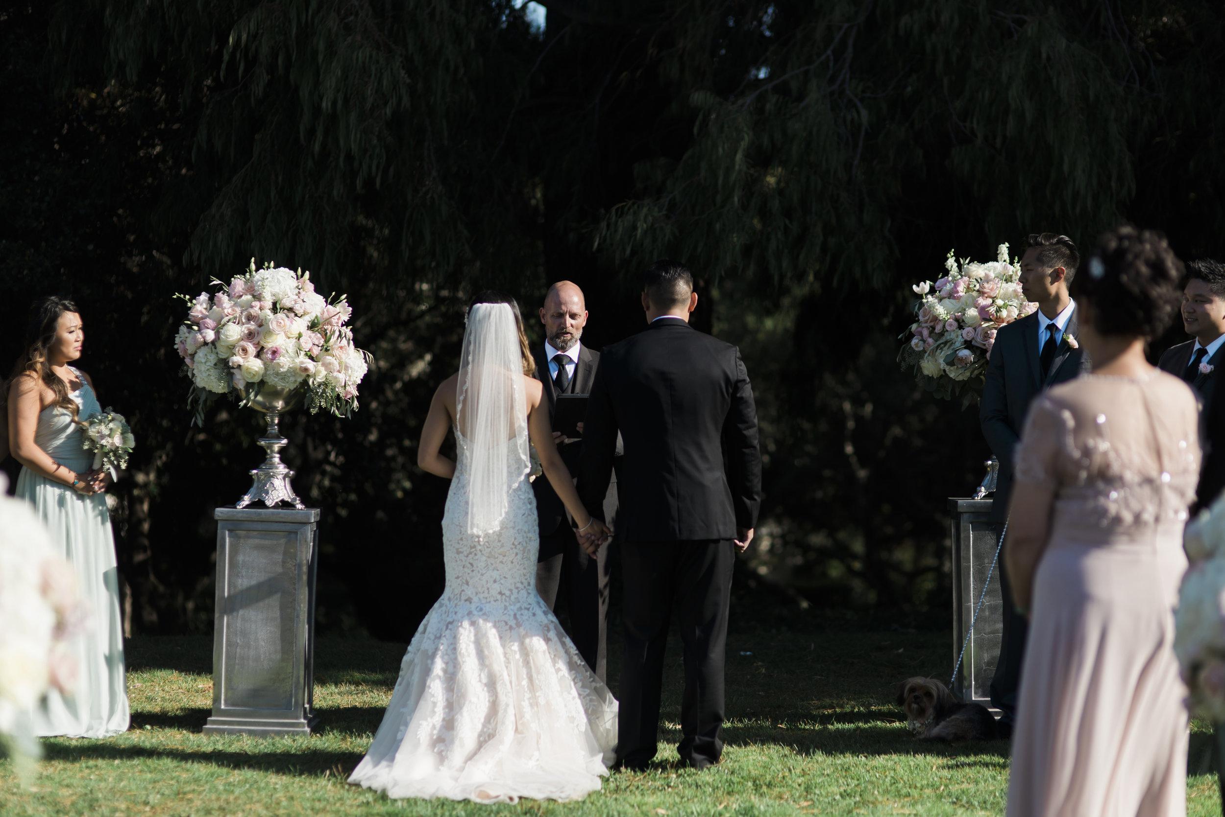 carien-will-wedding-412-(ZF-2465-09696-1-014).jpg