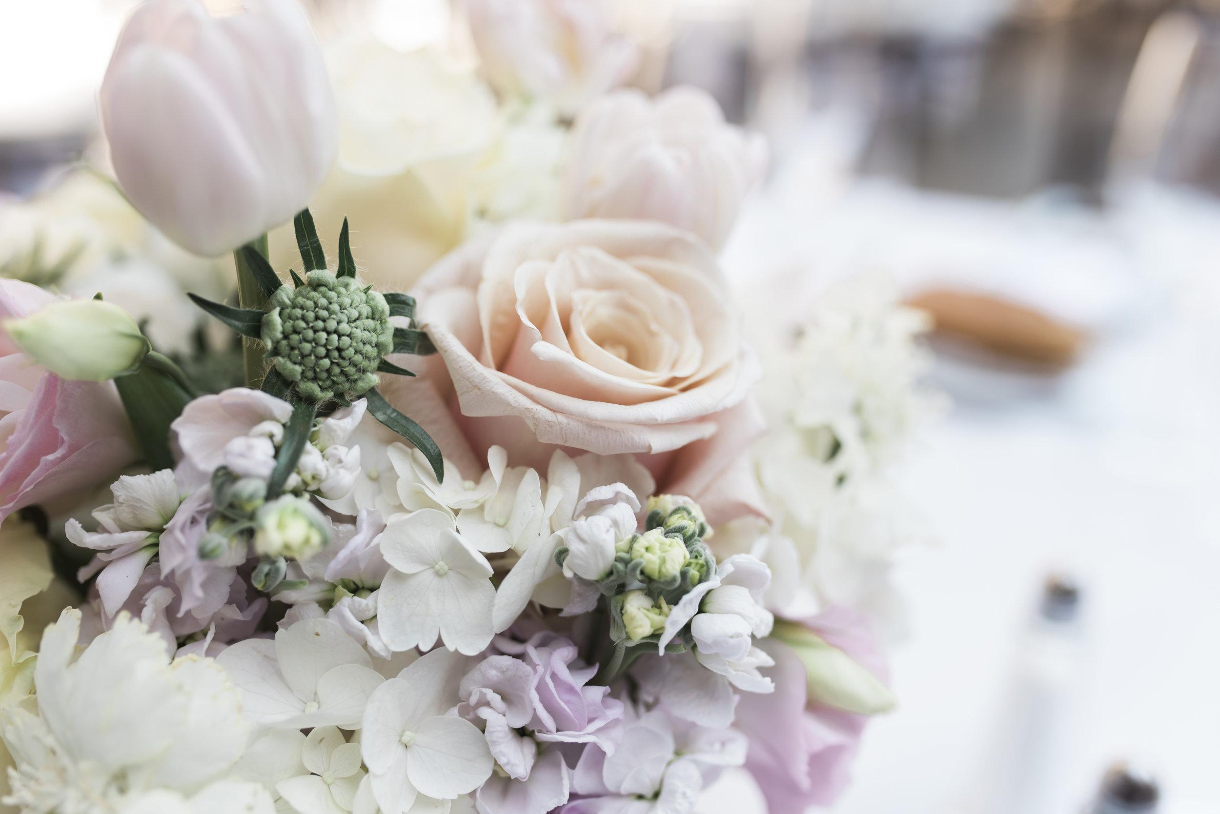 carien-will-wedding-560-(ZF-2465-09696-1-016).jpg