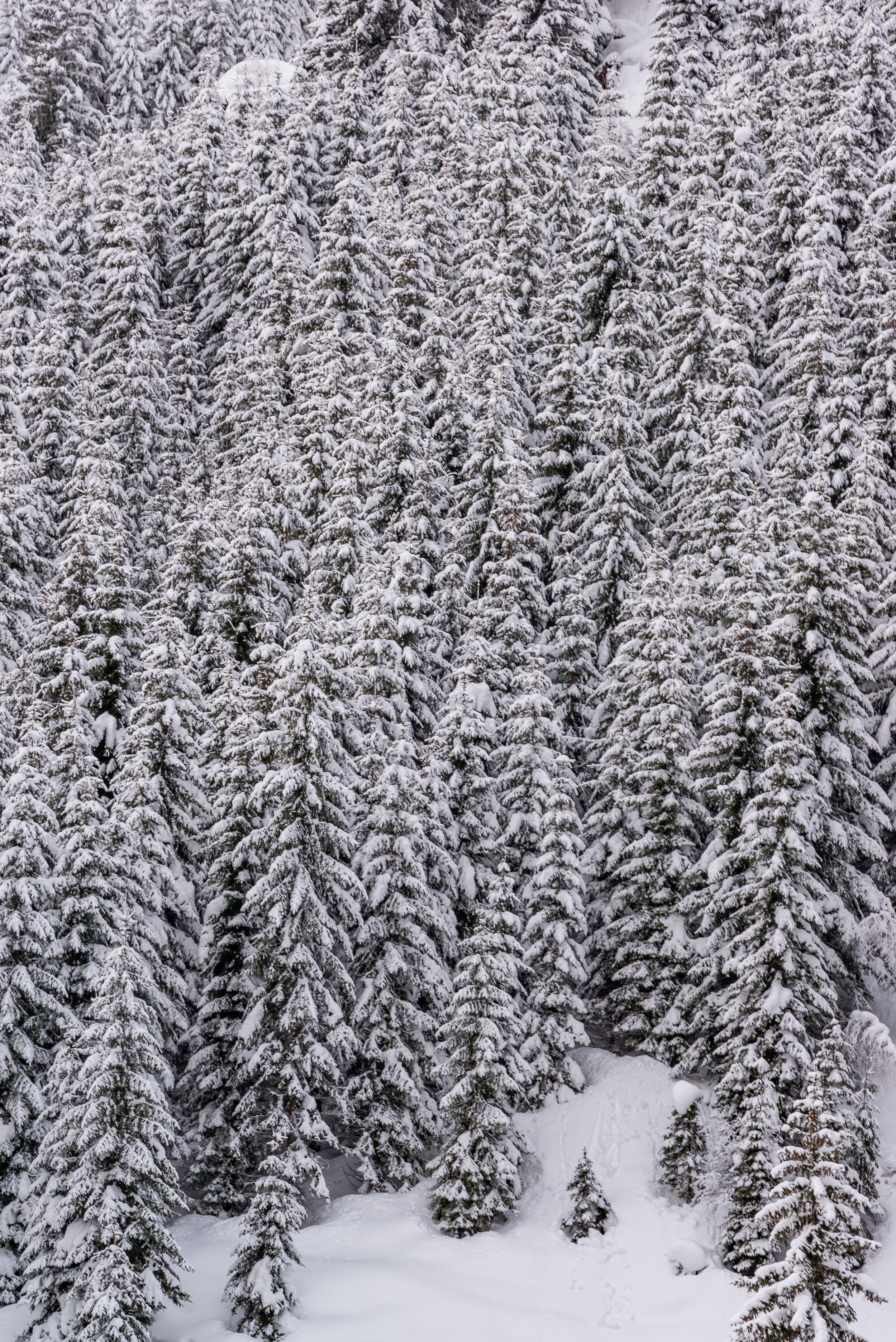 Austria 048.jpg
