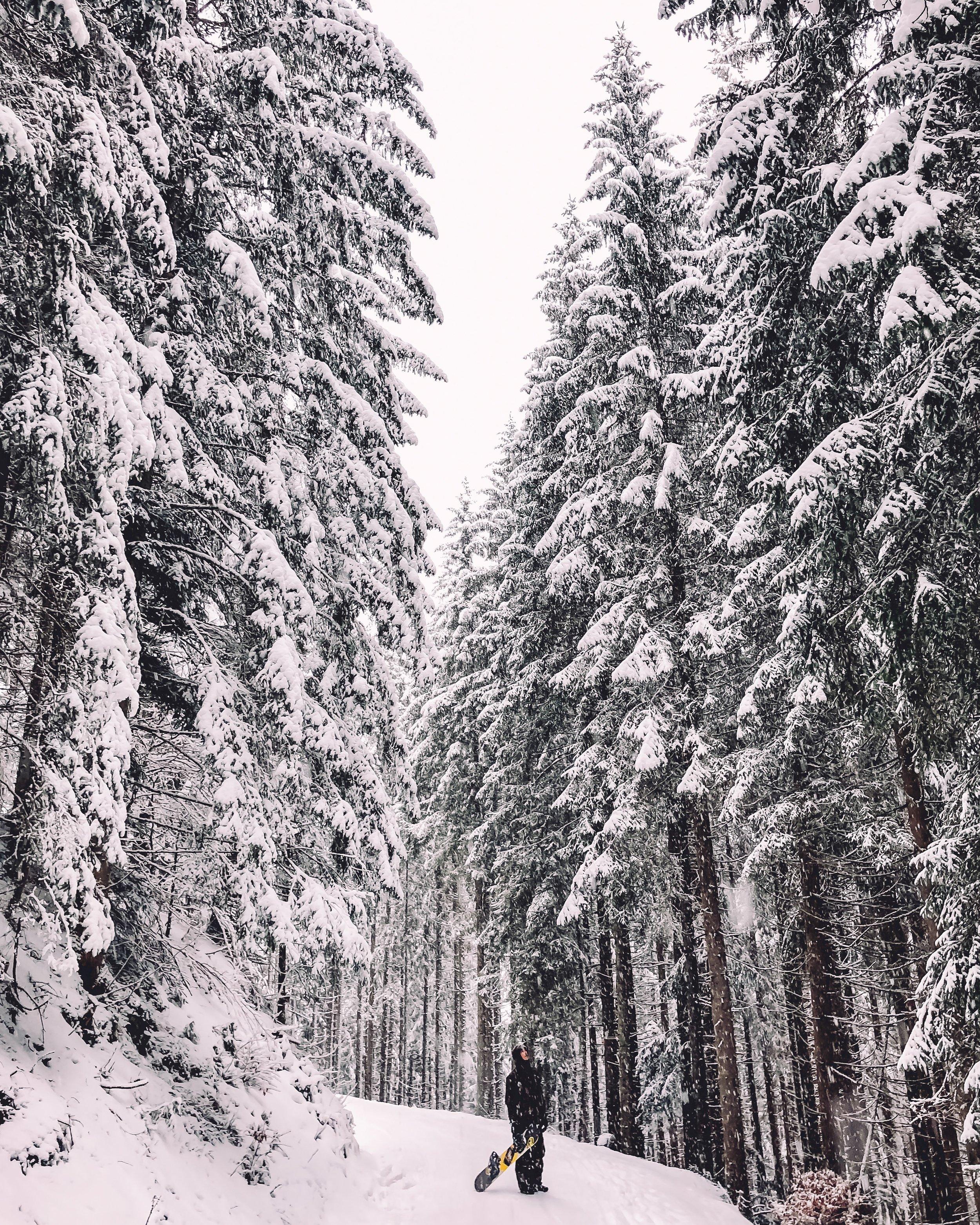 Austria 089.jpg