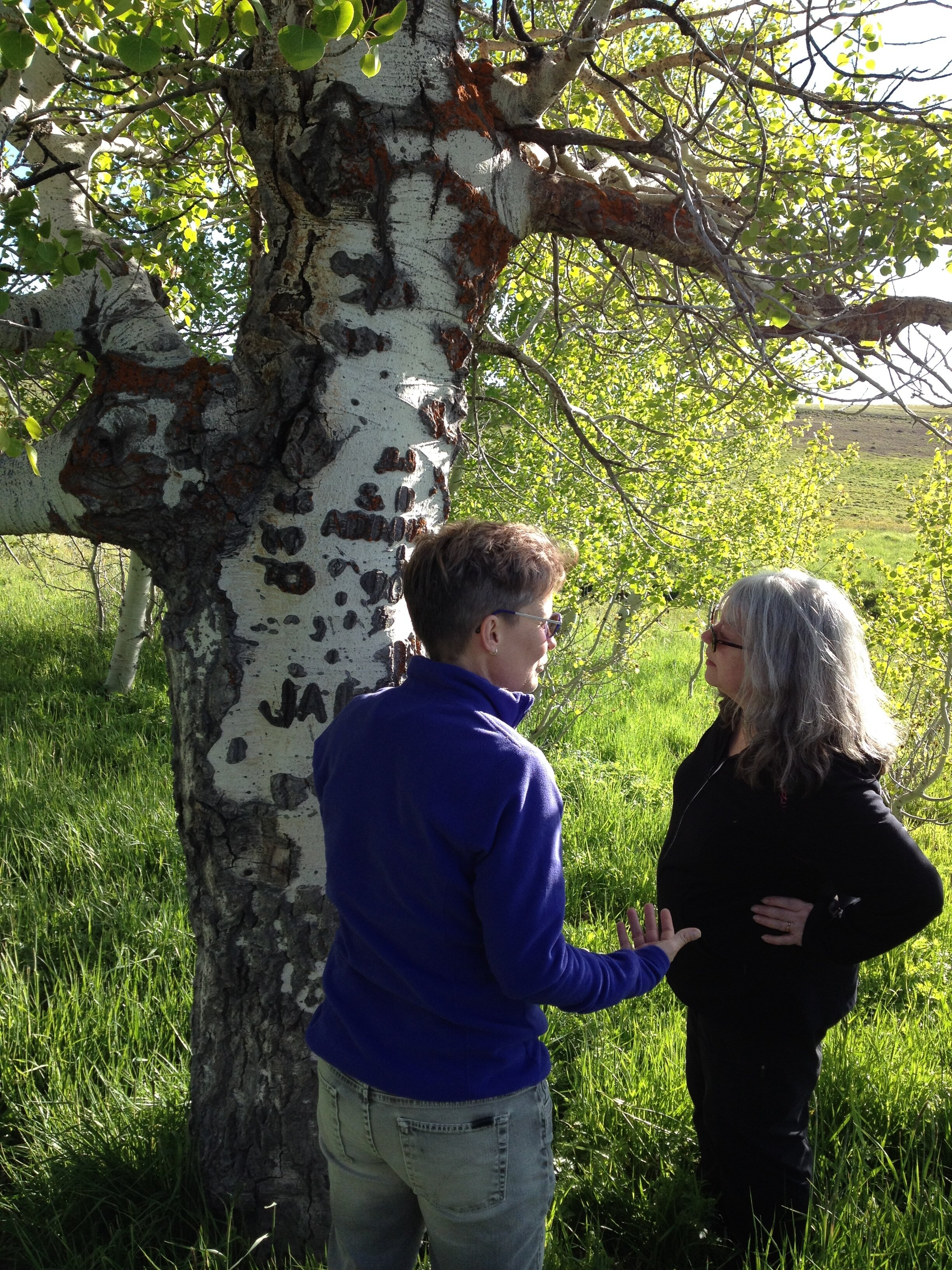 Stephanie LeMenager (English/ENVS) and Marsha Weisiger (History/ENVS) investigate an arborglyph in the Steens Mountain Cooperative Management and Protection Area, 2018. Photo by Nate Otjen.