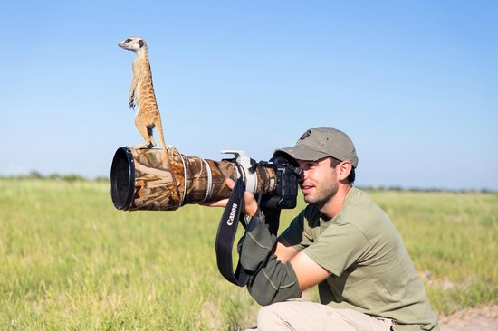 """Your focus has improved so much since you've been taking time to relax!"" — Zack the Meerkat"