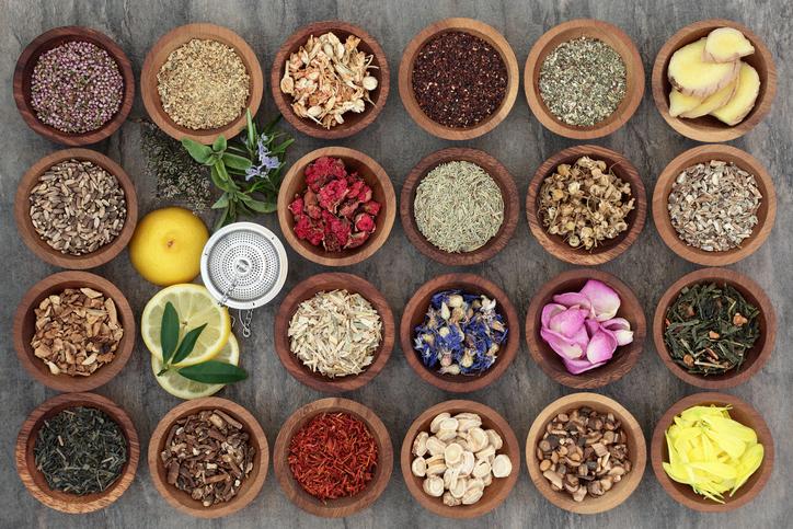 Herbalism Class | New Jersey | Philadelphia