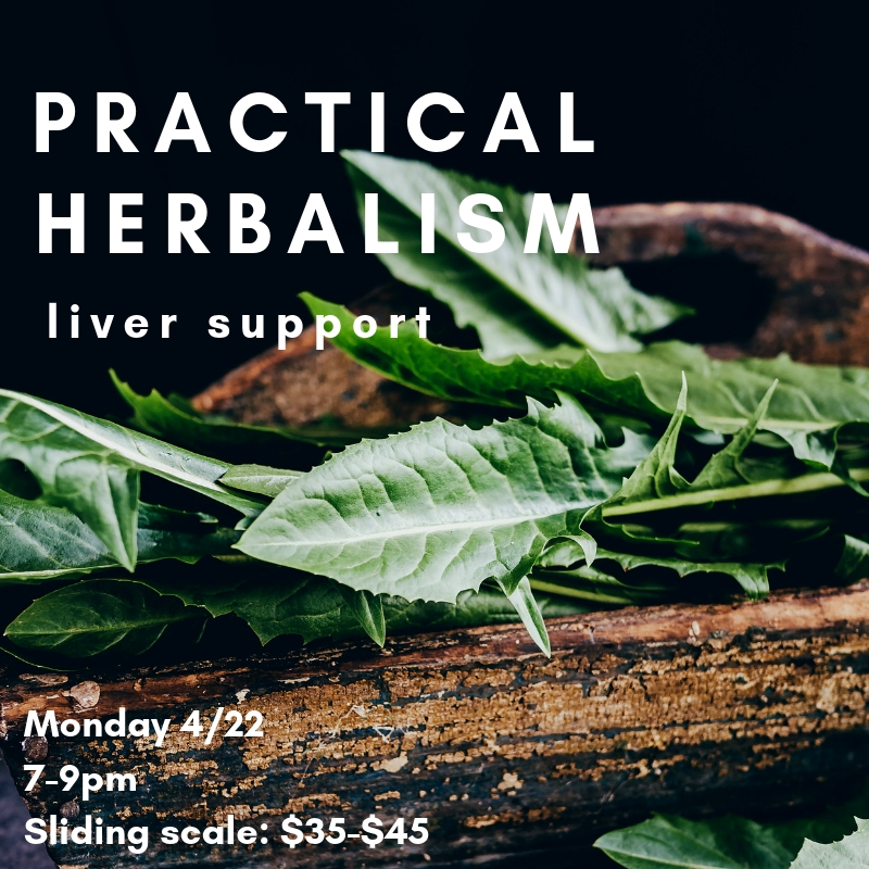 herbal liver support