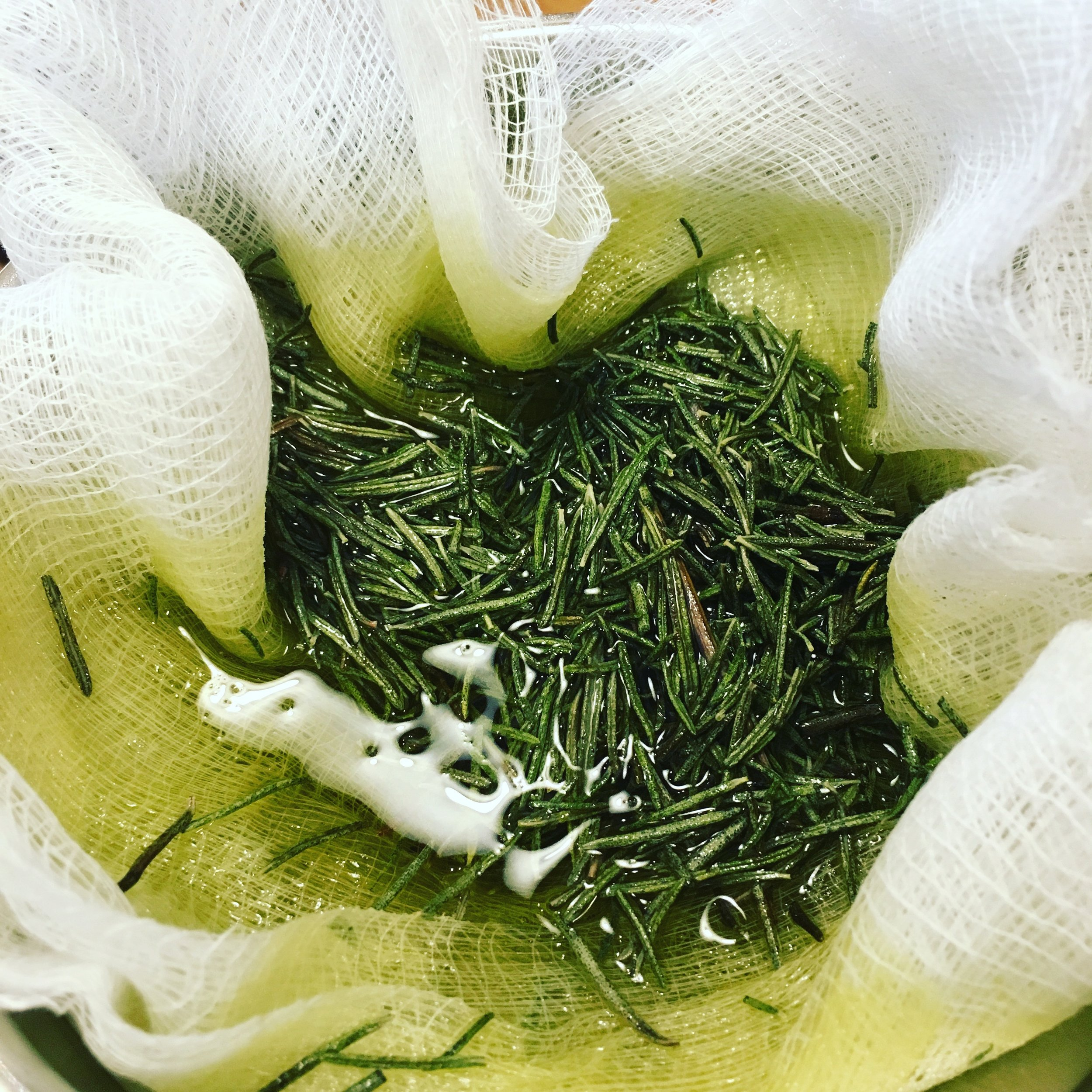 Straining gorgeous rosemary oil