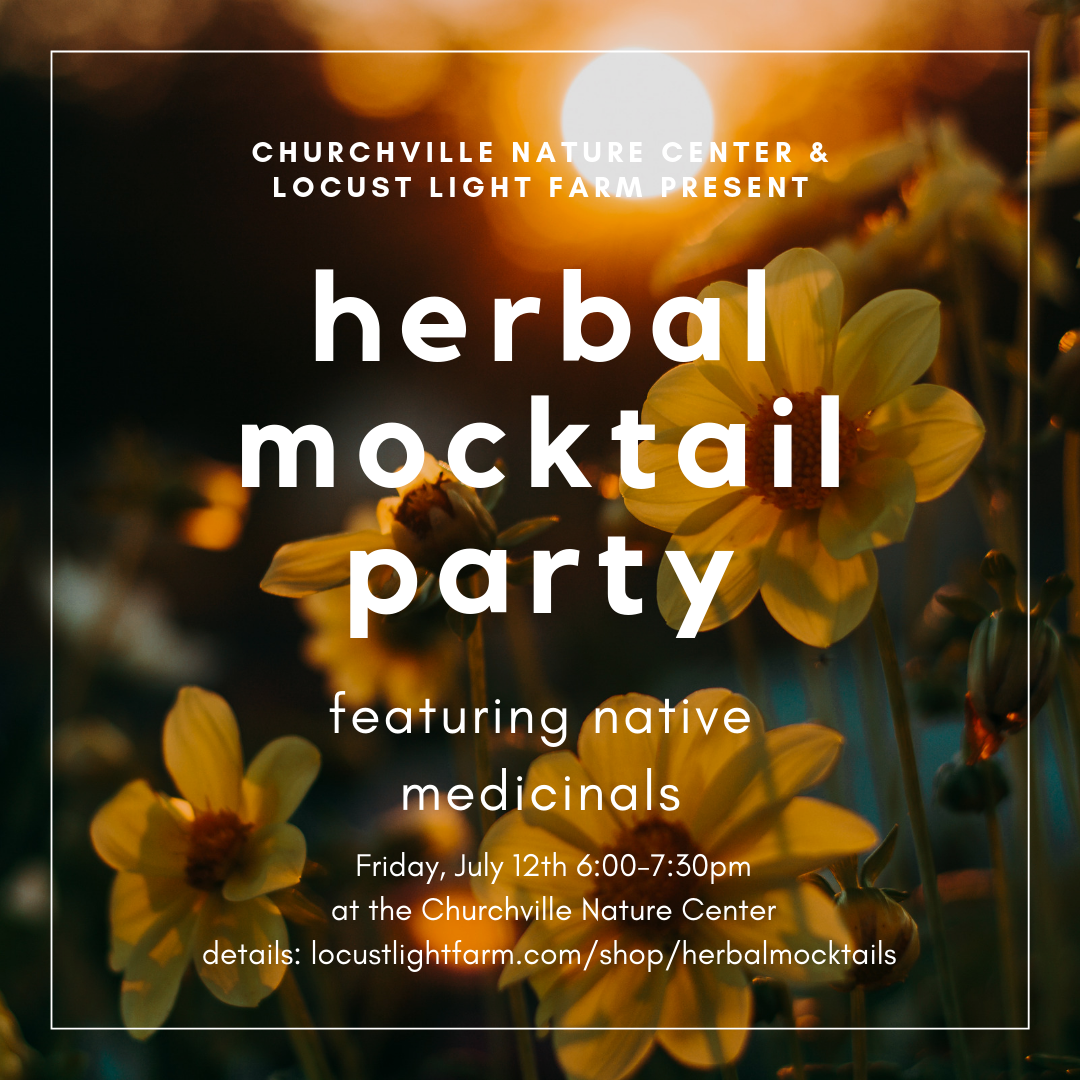 herbal mocktail party.png