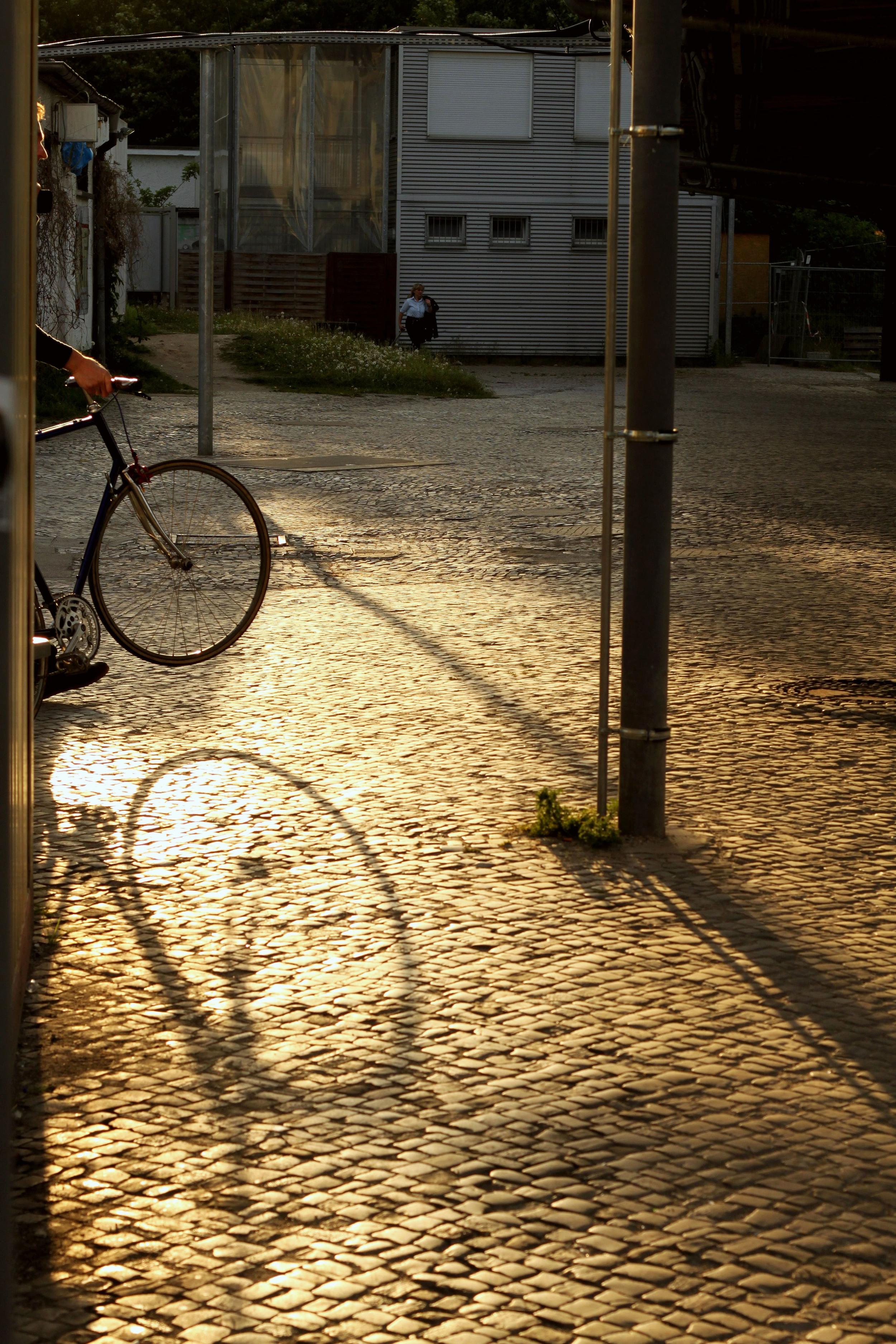 Zanecchia, Katie_Berlin-Bike-1.jpg