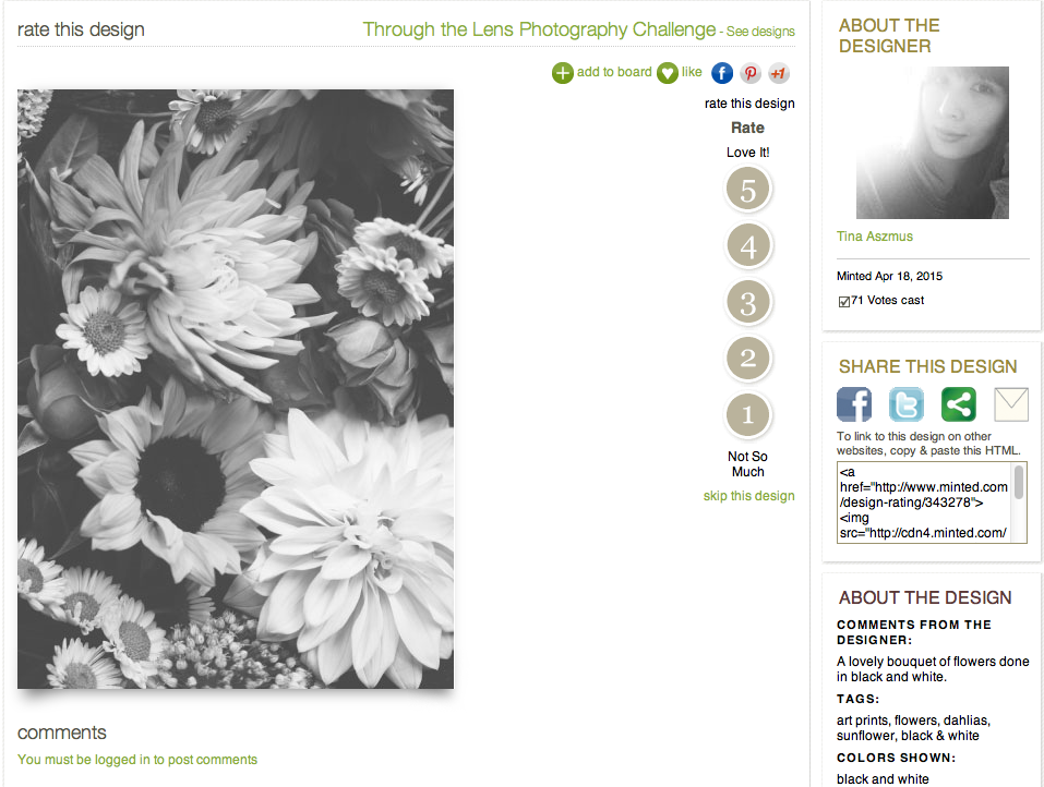 LLP blog | Minted Photography Challenge