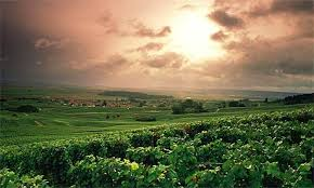 Epernay, The Champage region of France