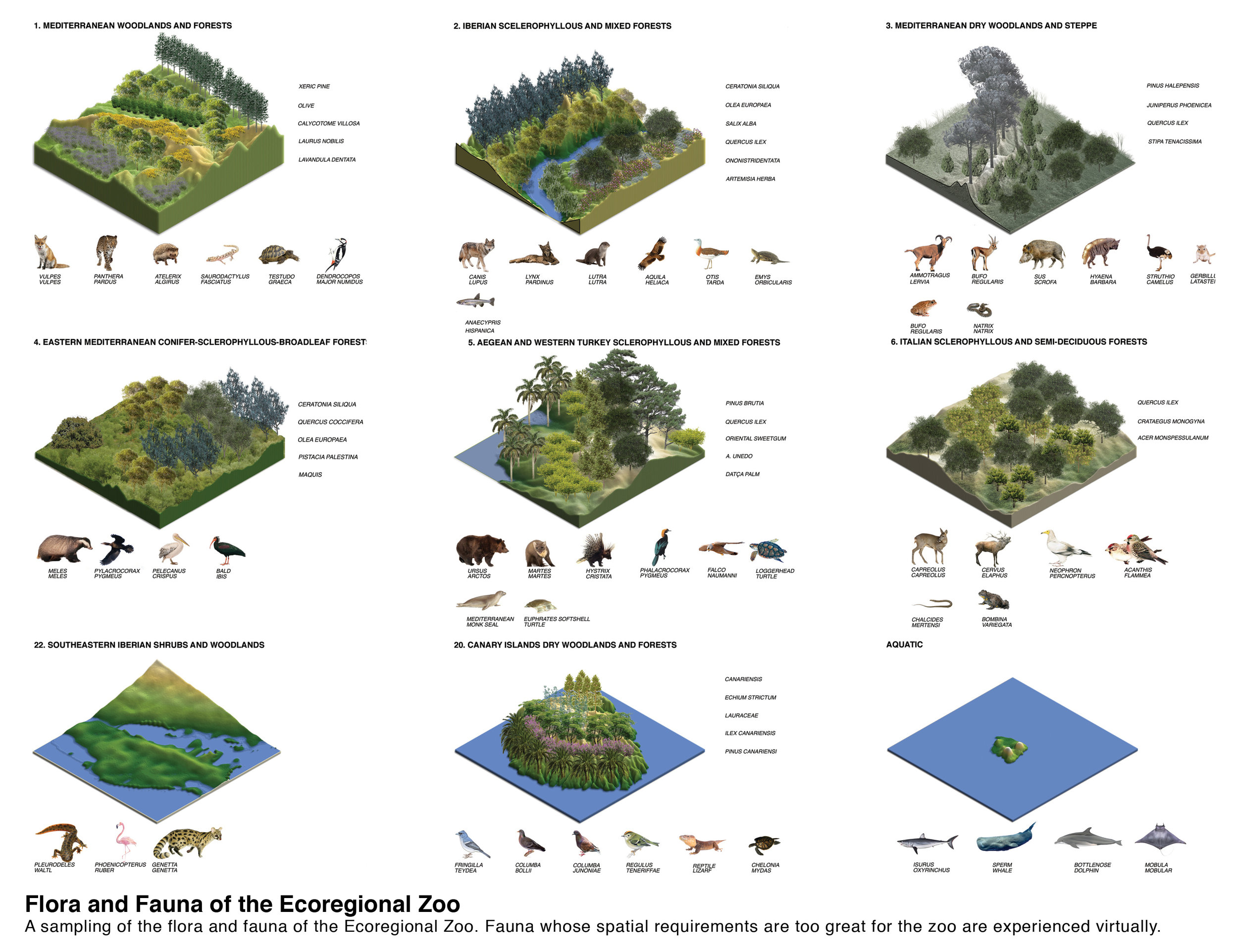 hinterlands_ecoregional zoo_03.jpg