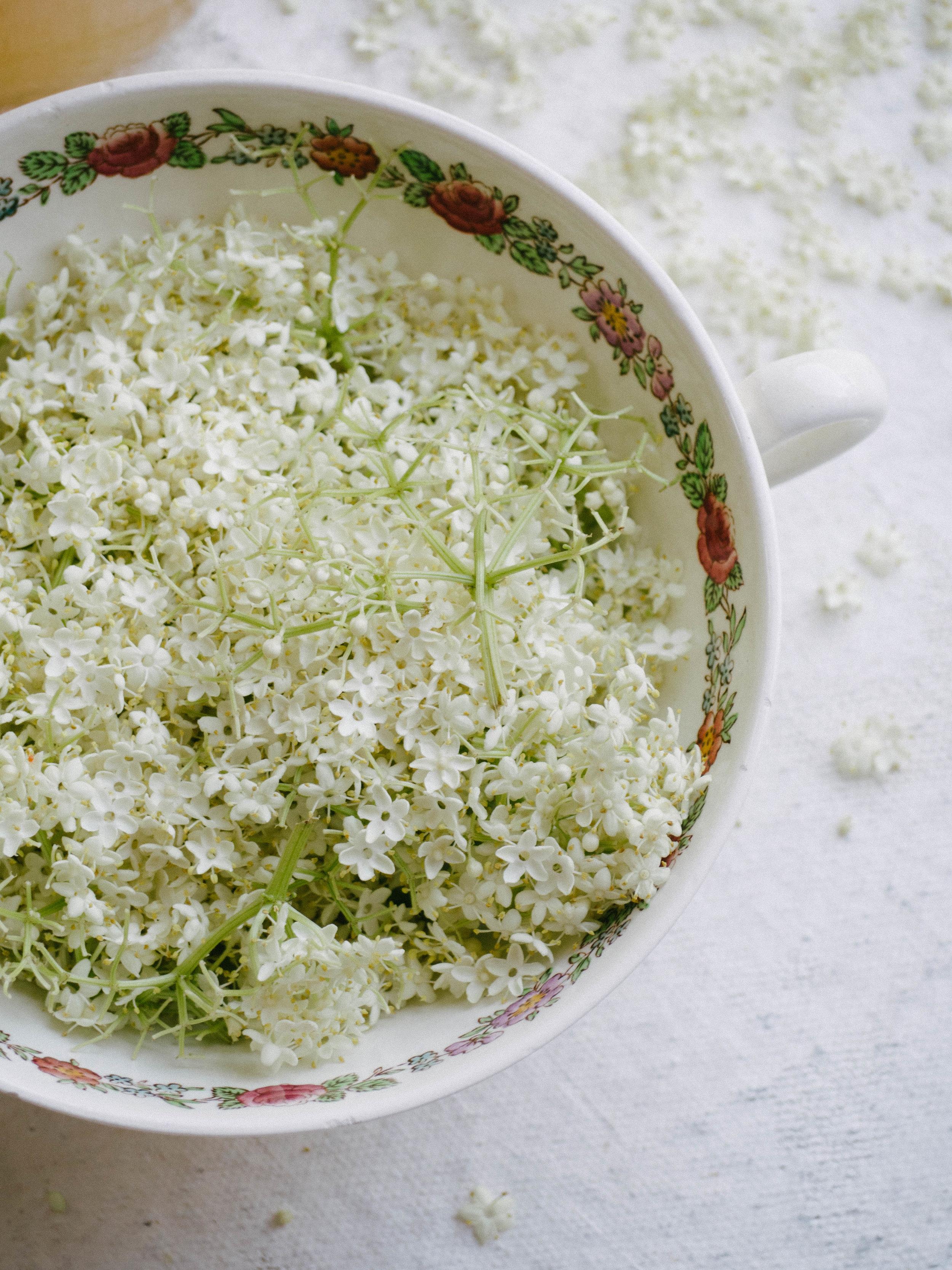 Fresh Elderflowers from Petite Ingredient