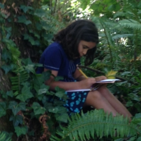 One of Oriana's writers describing the woods that surround her.