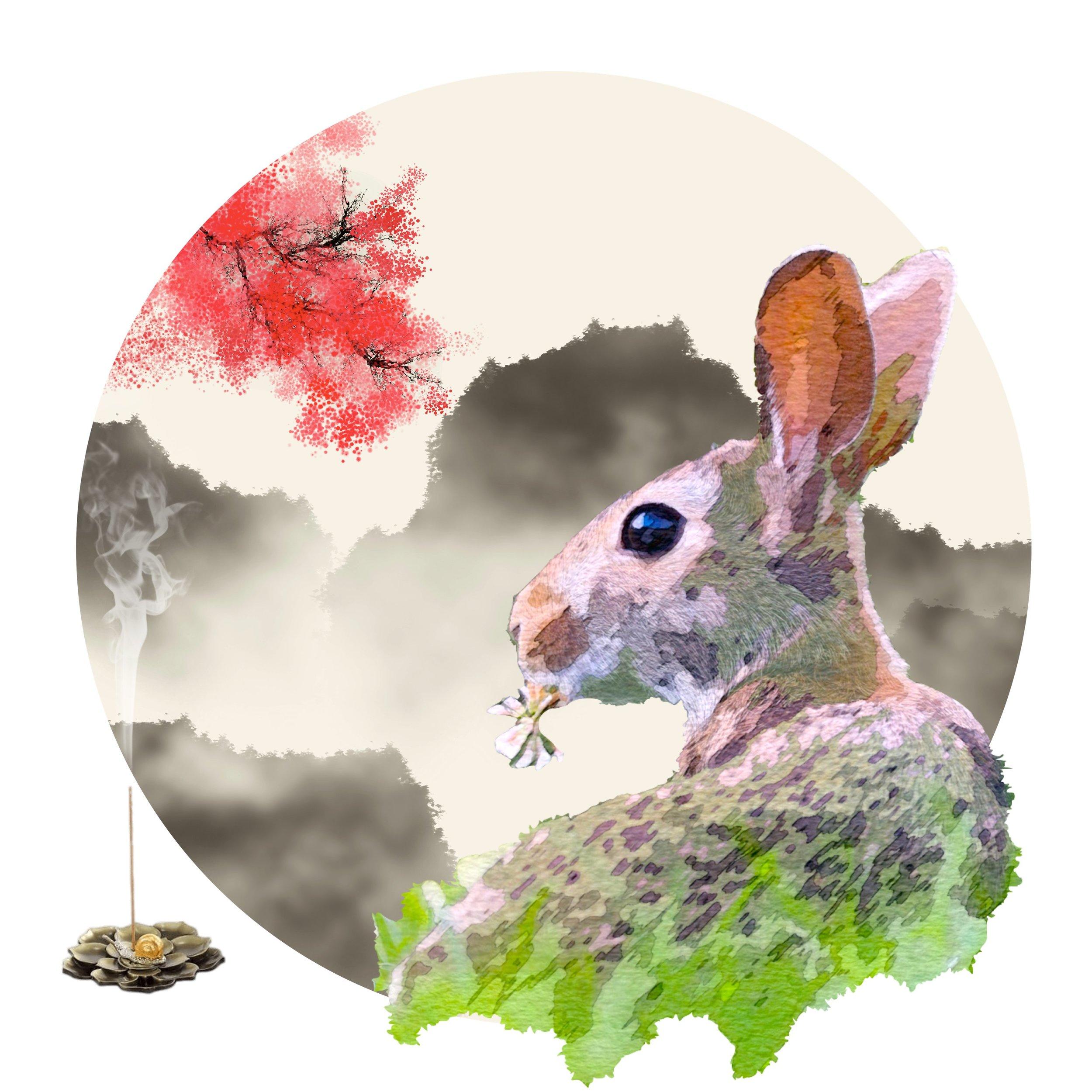 yin fire rabbit march 2019 chinese astrology horoscopes.jpg