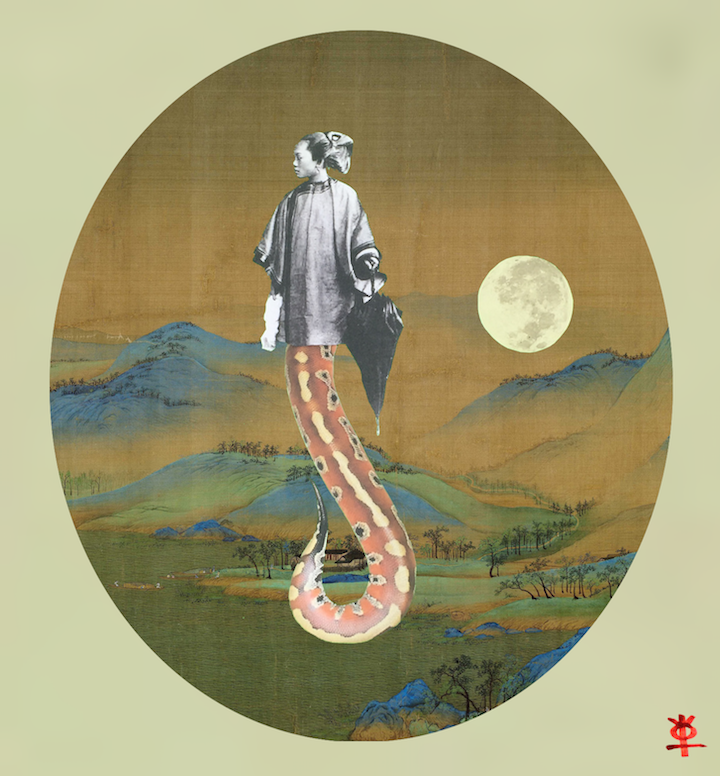 yin earth snake not knowing and imagination