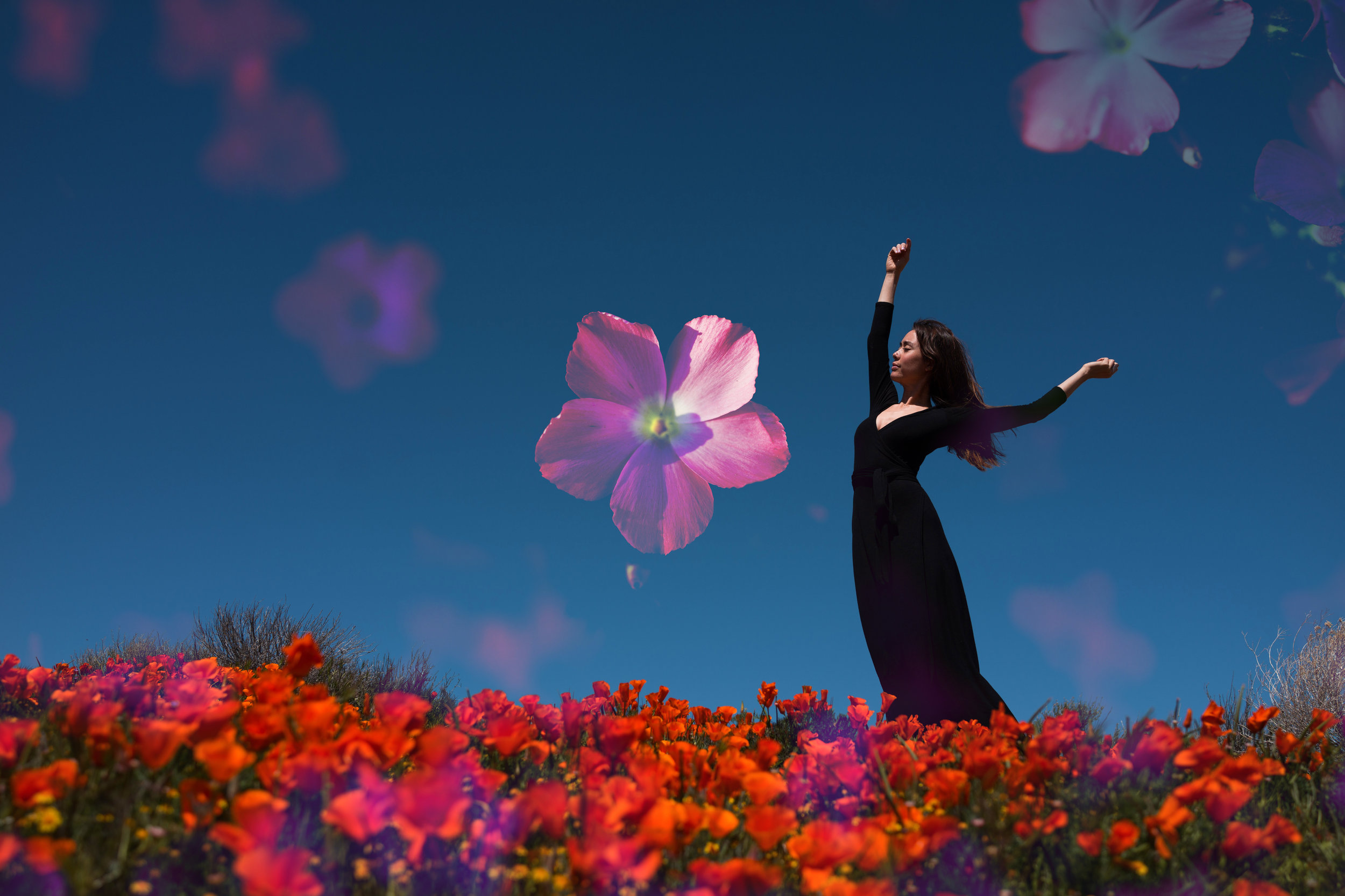 Kat flower DSC06629**.jpg