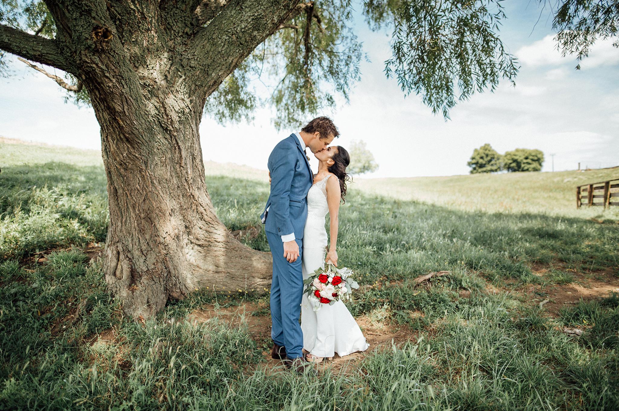 Wedding Photography kiss Te Awamutu Waikato