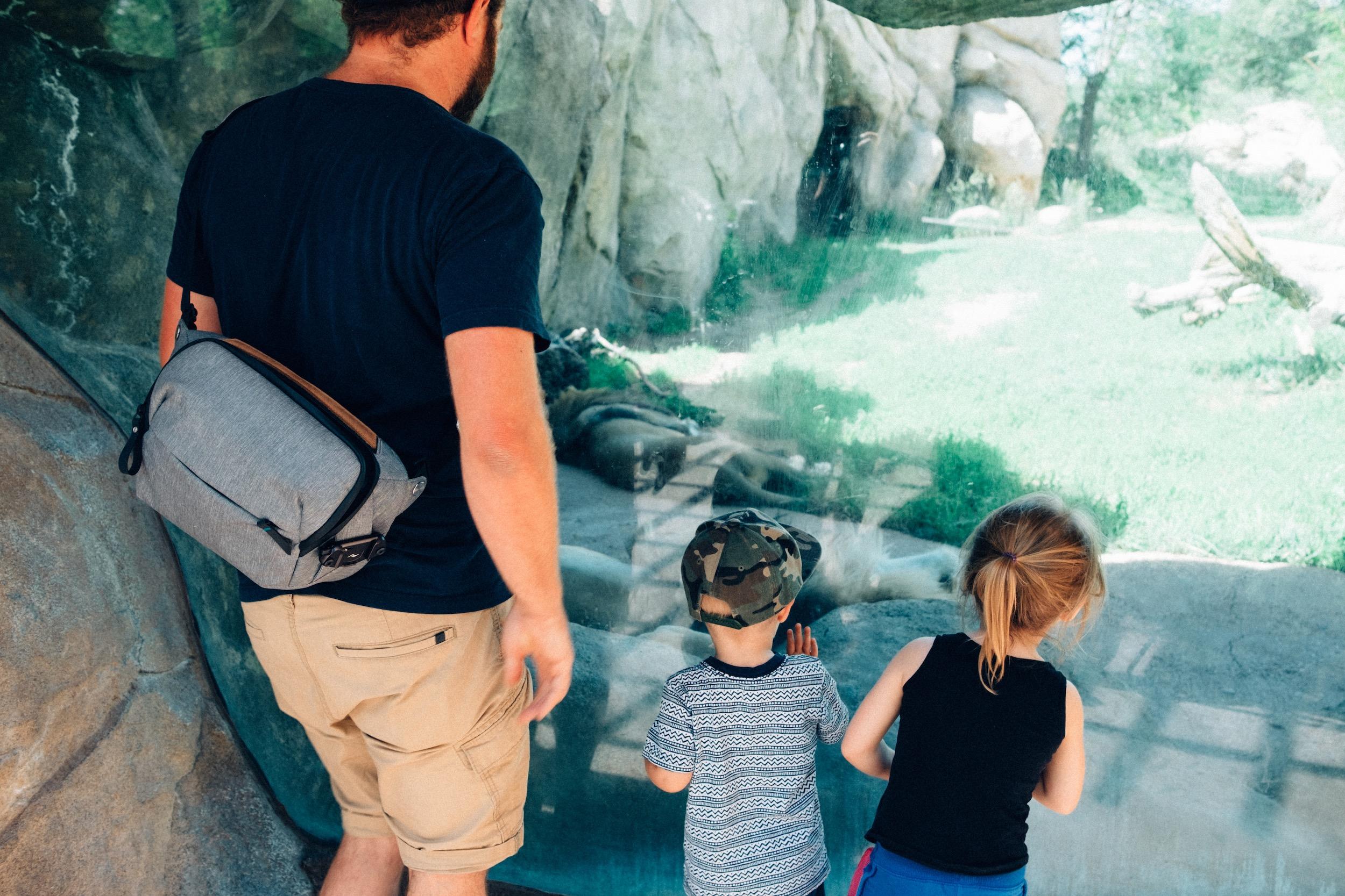 The Denver Zoo - 11.jpeg