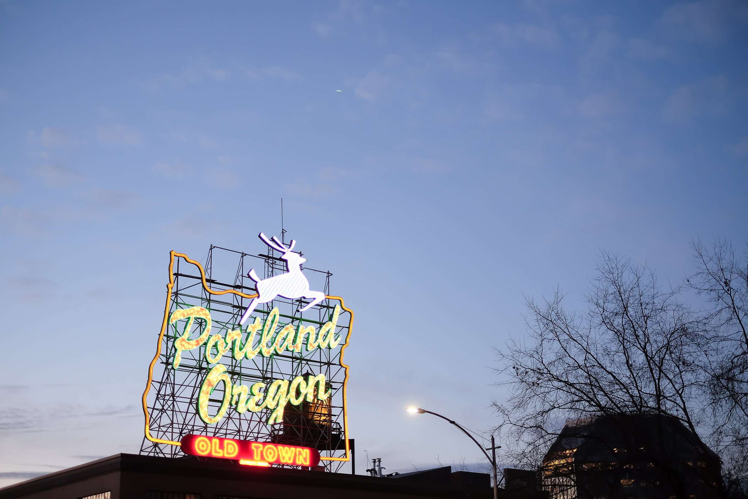 Portland12016-2.jpg