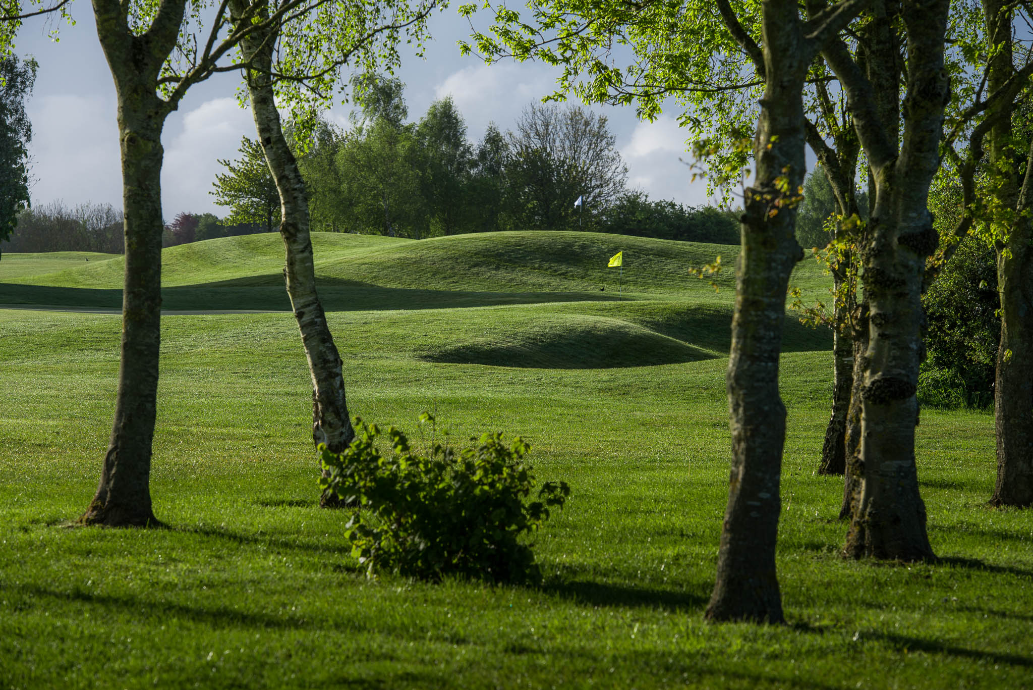 BGL_Thornbury_GolfCourse_AndyHiseman_72dpi_EmailWeb-35.jpg