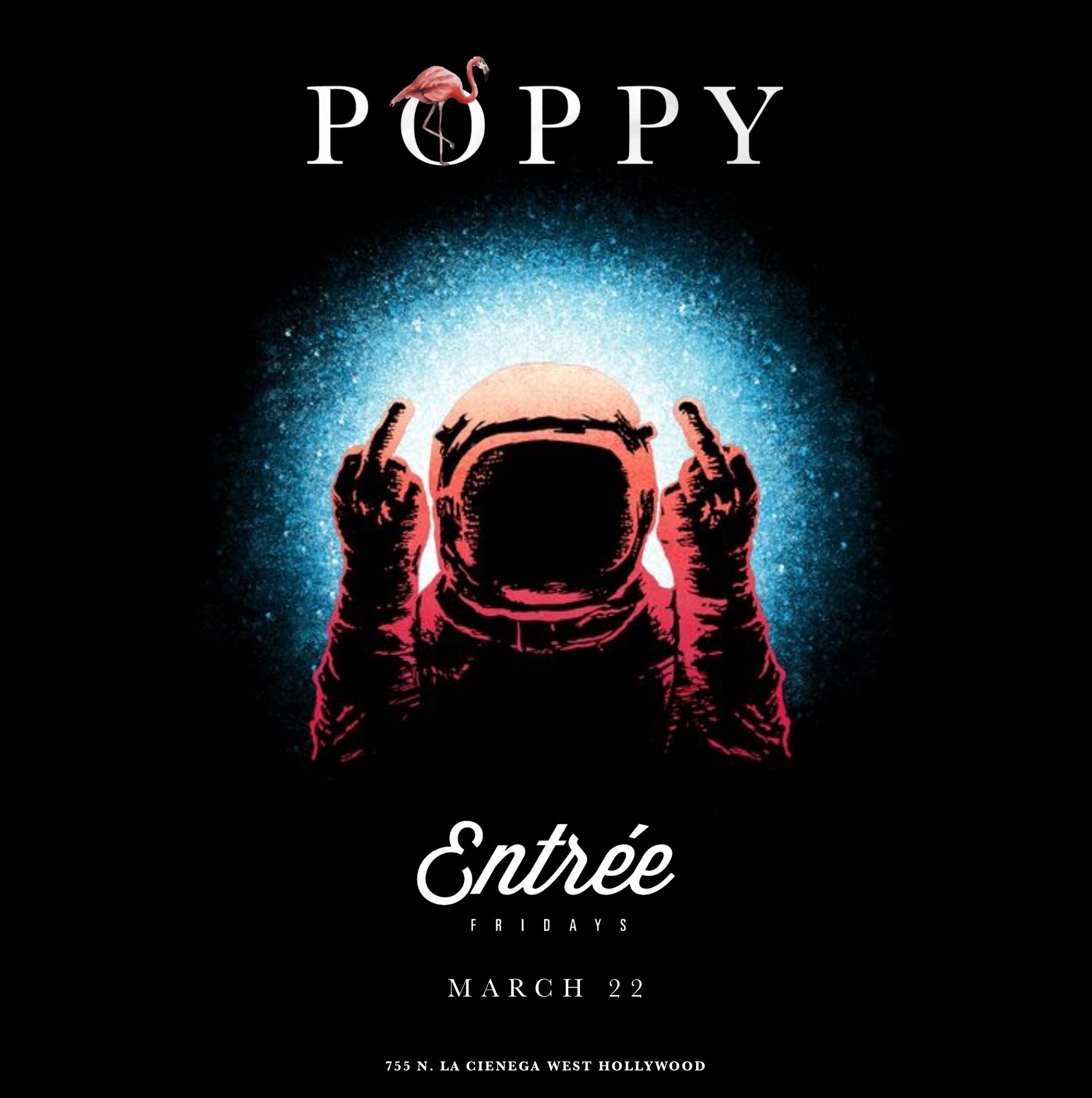 Poppy Friday 1_25_19  .jpeg