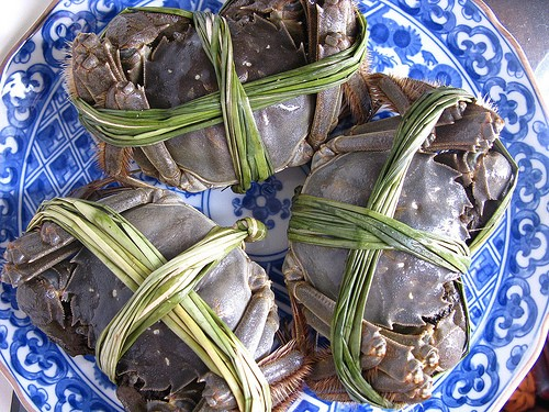 "Steamed Hairy Crab: Hairy Crabs are traditionally served with Ginger Tea or Wine to balance the ""cooling yin"" nature of the crab. Hairy Crab season begin in September and ends in  November. Eating the small but fleshy and roe-filled Hairy Crab is a time-consuming exercise that requires patience but is well worth the trouble."
