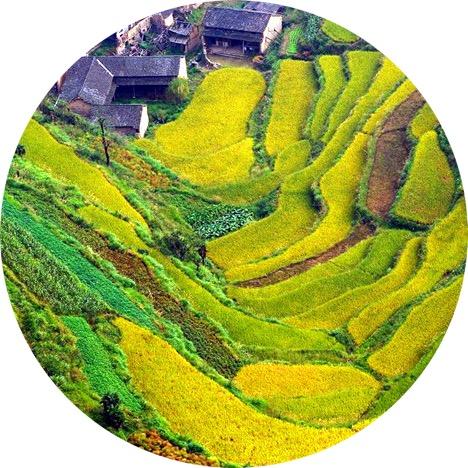 WeChat Image_20170418144722.jpg