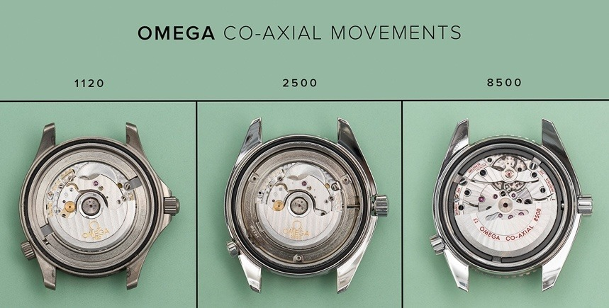 The evolution of Co-Axial movements.