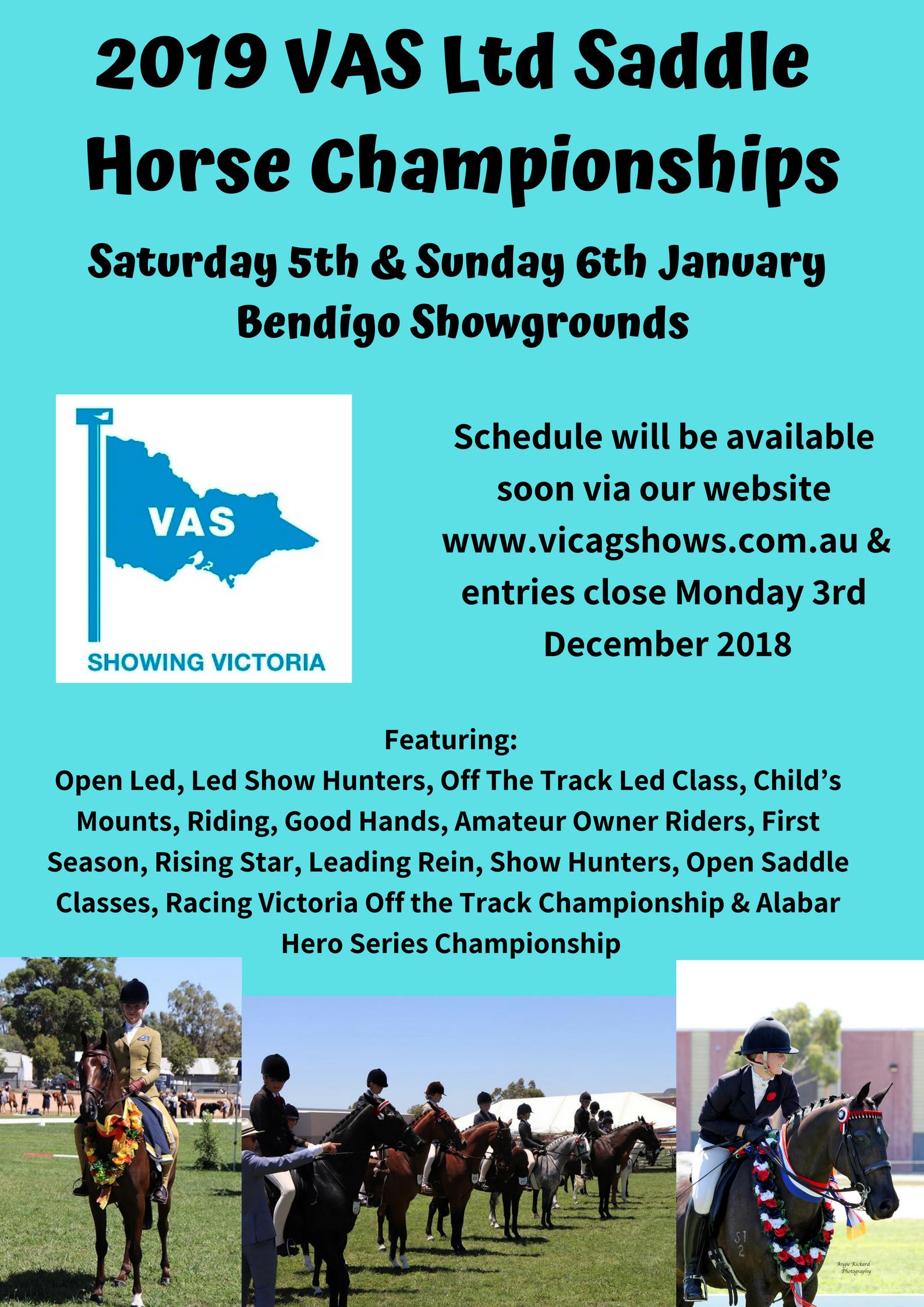 2019 VAS Ltd Saddle Horse Championships.jpg