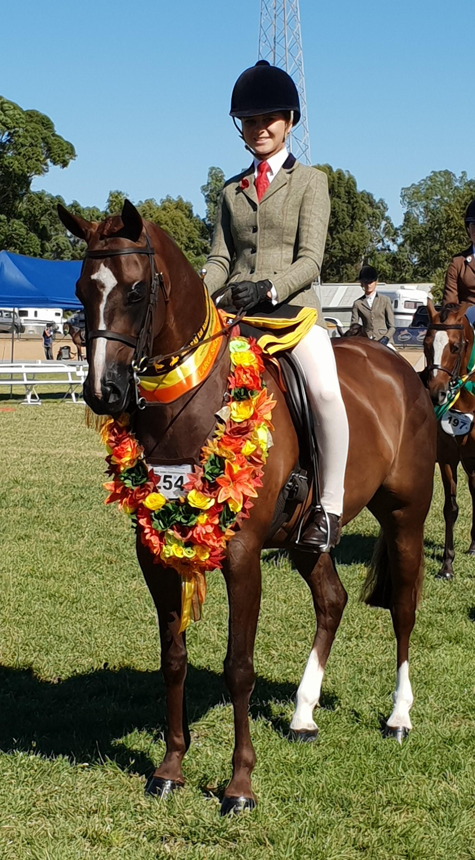 Large Show Hunter Pony.jpg