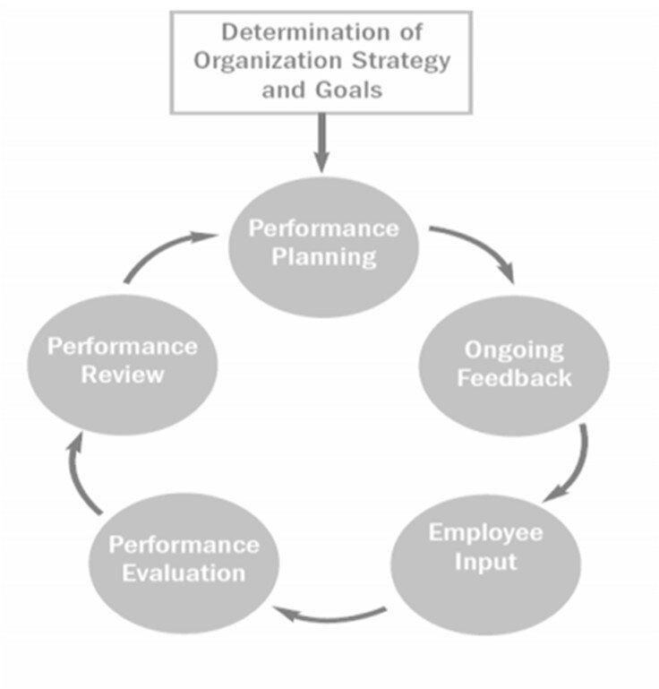 The performance management model (Pulakos, 2004)