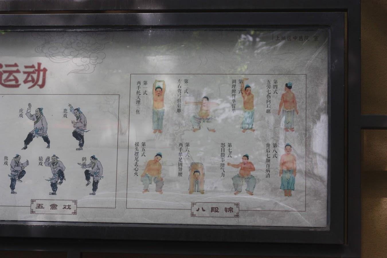 IMG_3090 Yu Fei2.JPG