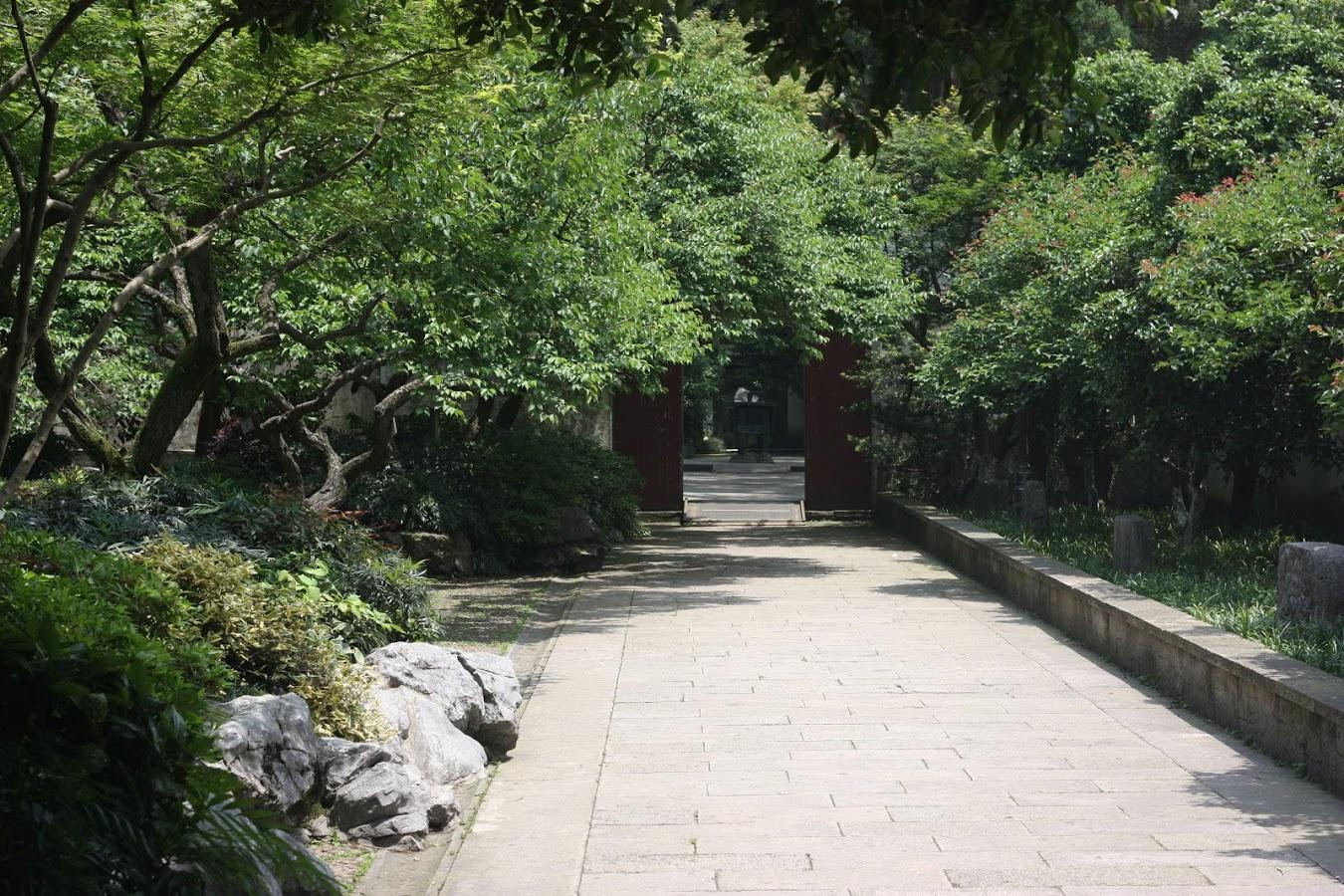 IMG_3059 Yu Fei 5.JPG