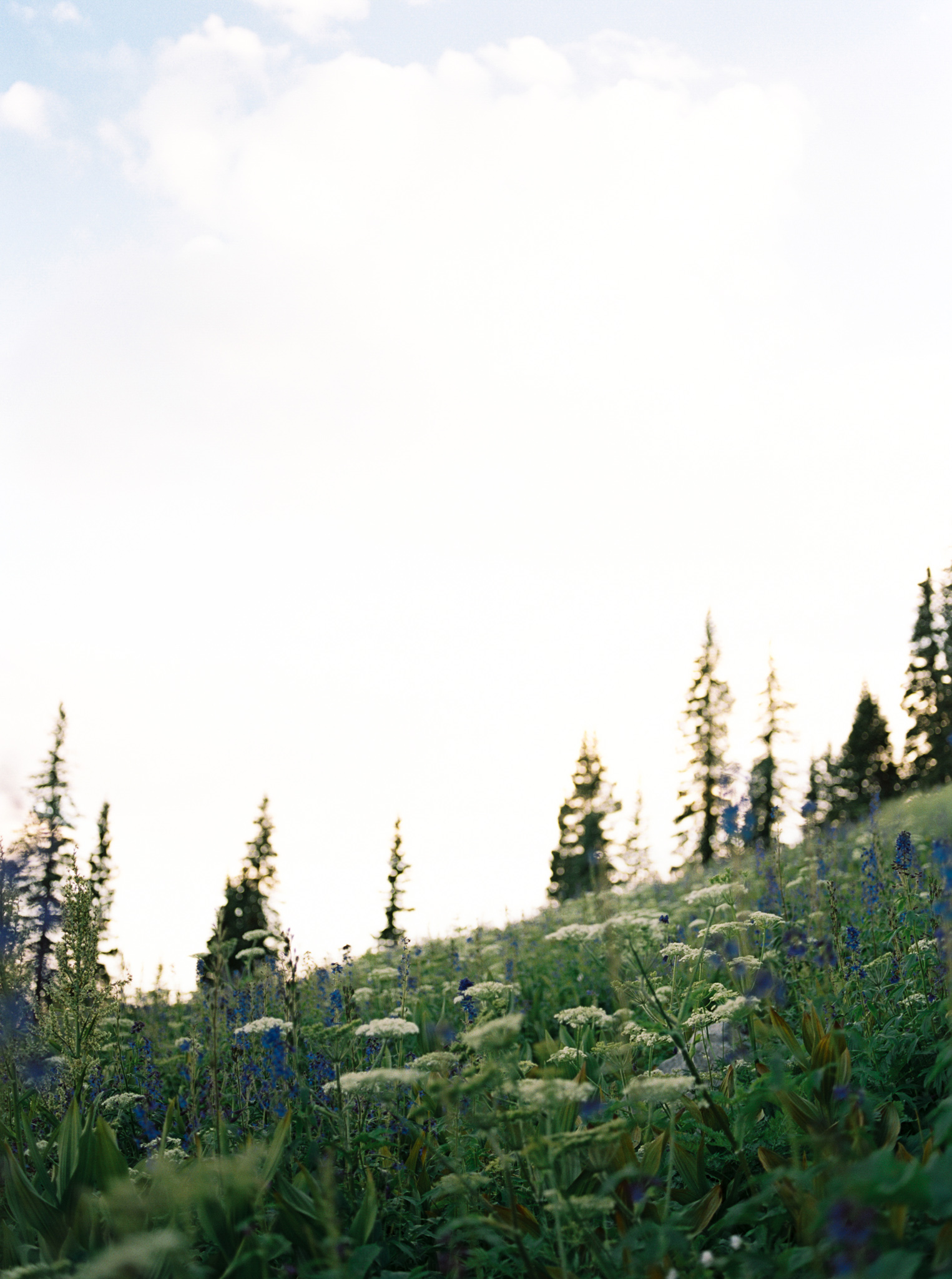 Redeeming Love Photography-57.jpg