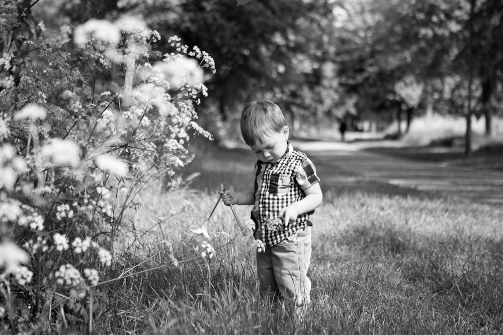 toddler picking flowers in park