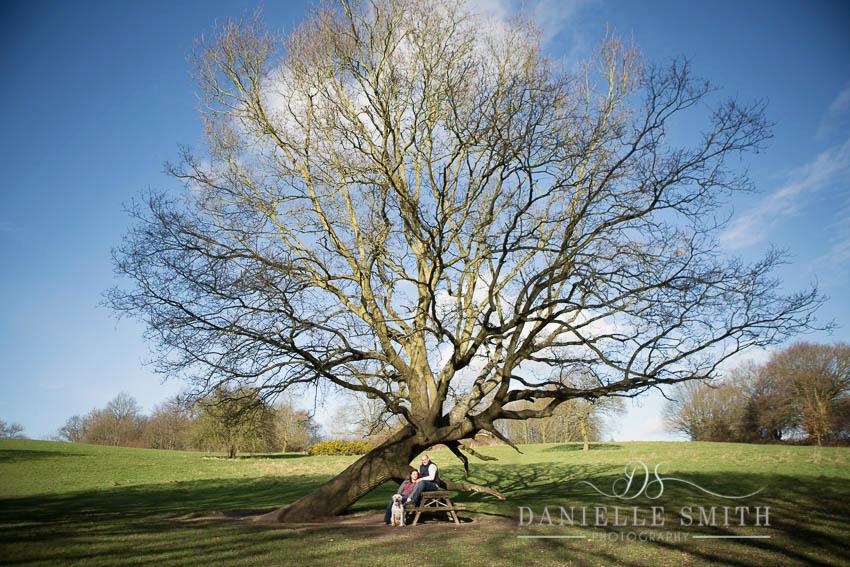 woodland engagement photography session with dog