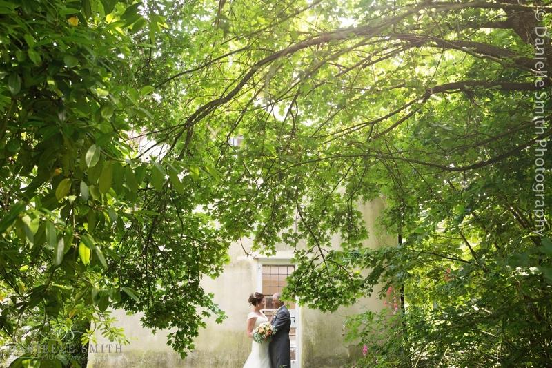 bride and groom under huge tree at houchins wedding venue